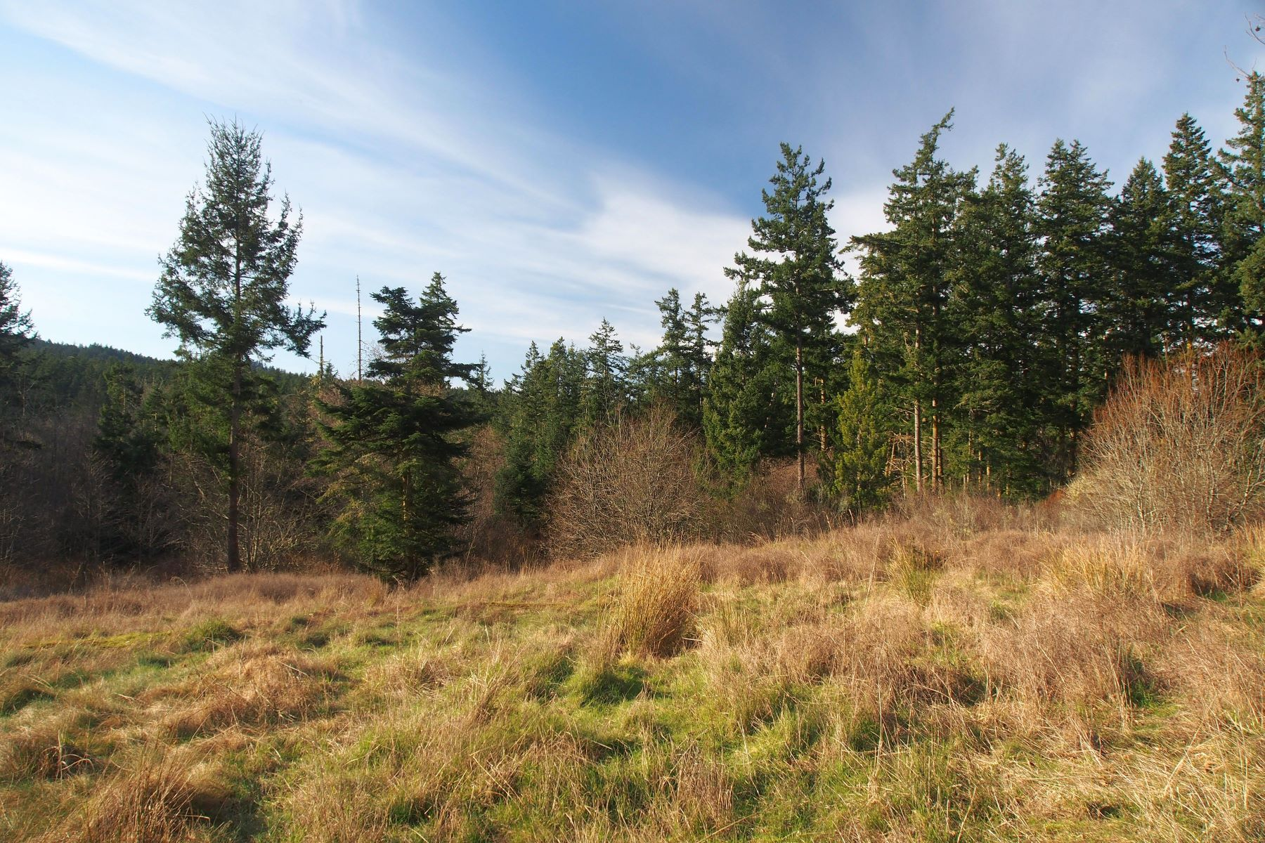 Terrain pour l Vente à Five Acre Sunny Lot XXX Wold Road Friday Harbor, Washington, 98250 États-Unis