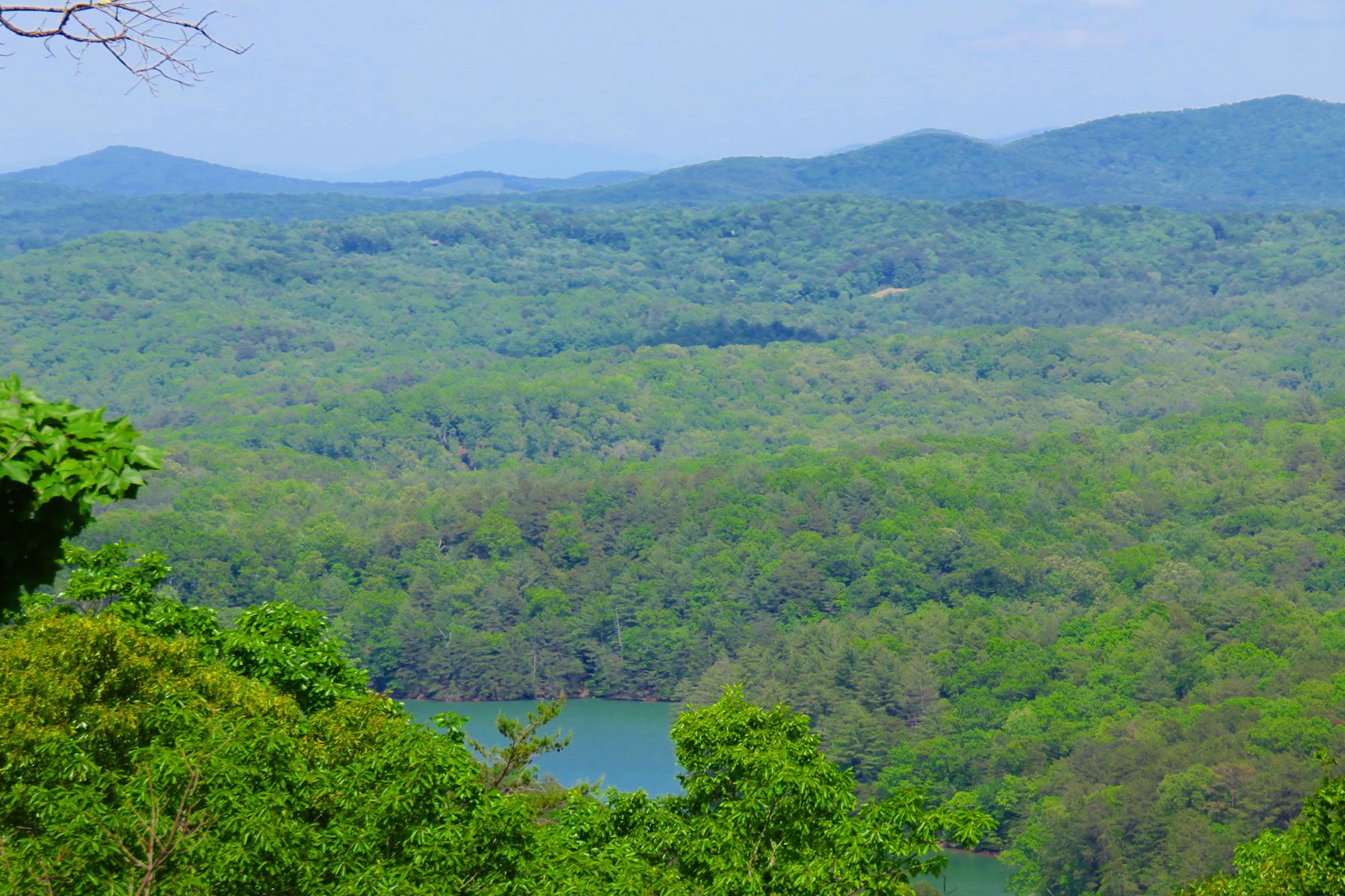 Terrain pour l Vente à Amazing Lot In Gated Community 8 Lakeview Drive Blue Ridge, Georgia, 30513 États-Unis