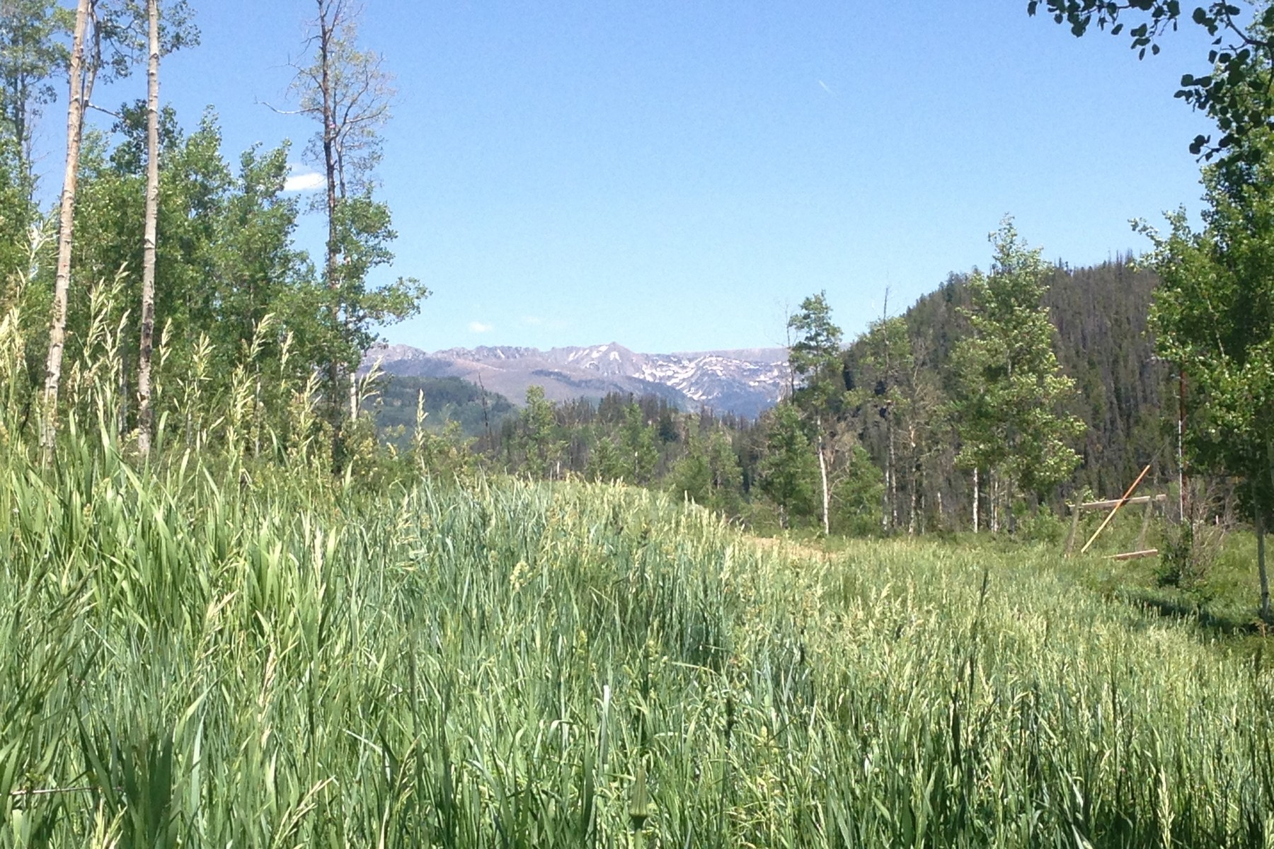 Land for Sale at Seed House Ranch 56265 Zirkel View Lane Clark, Colorado 80428 United States