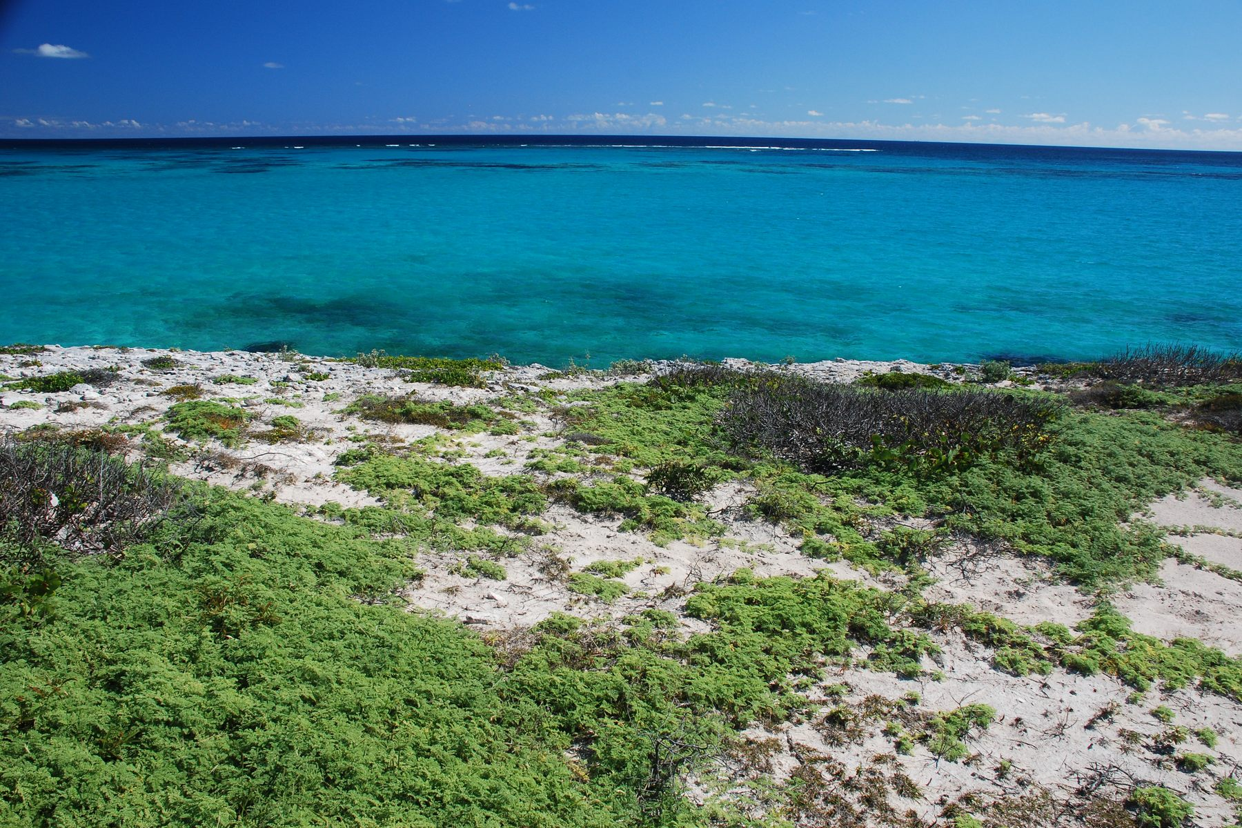 Terreno para Venda às Oceanfront Lot 2017 Sailrock, South Caicos, Turks E Caicos