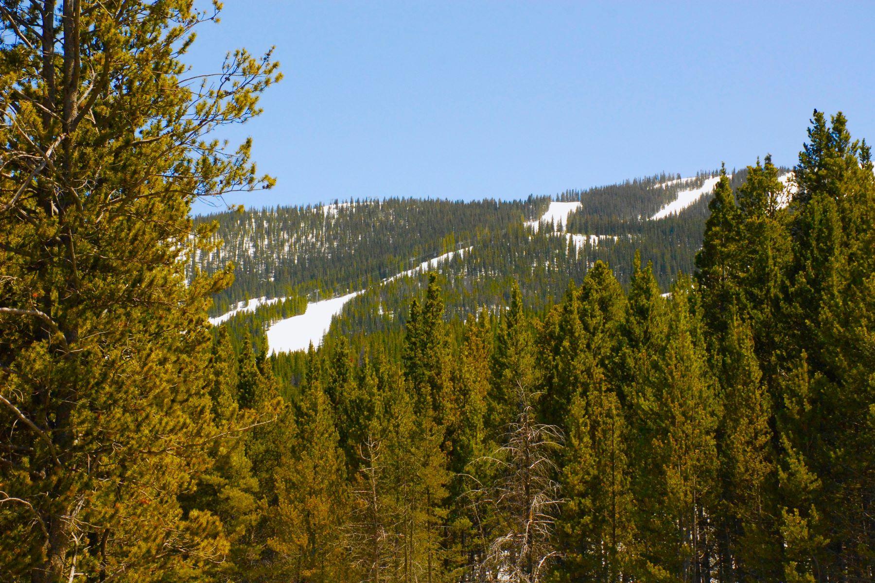 Propriété à vendre Copper Mountain