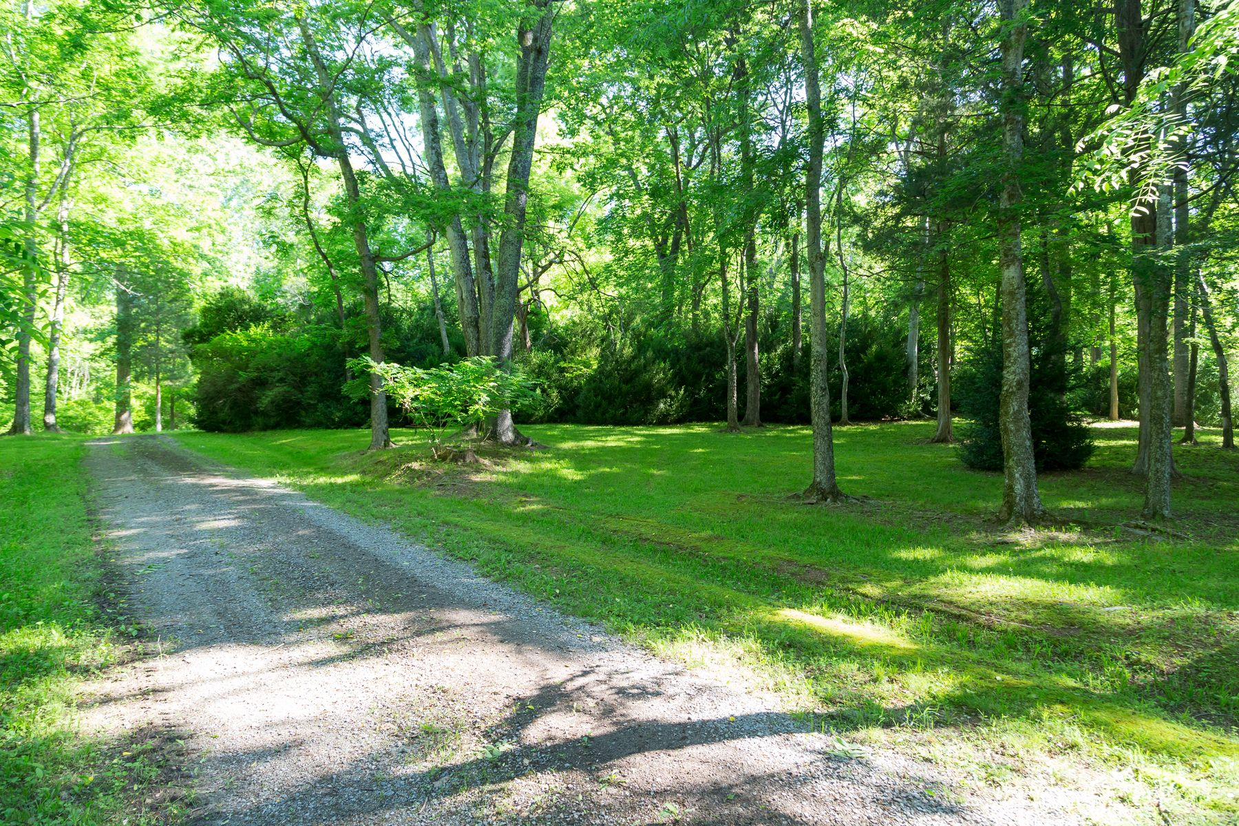 Additional photo for property listing at Gardner Farm 792 E OLD MOUNTAIN RD Mineral, Virginia 23117 Estados Unidos