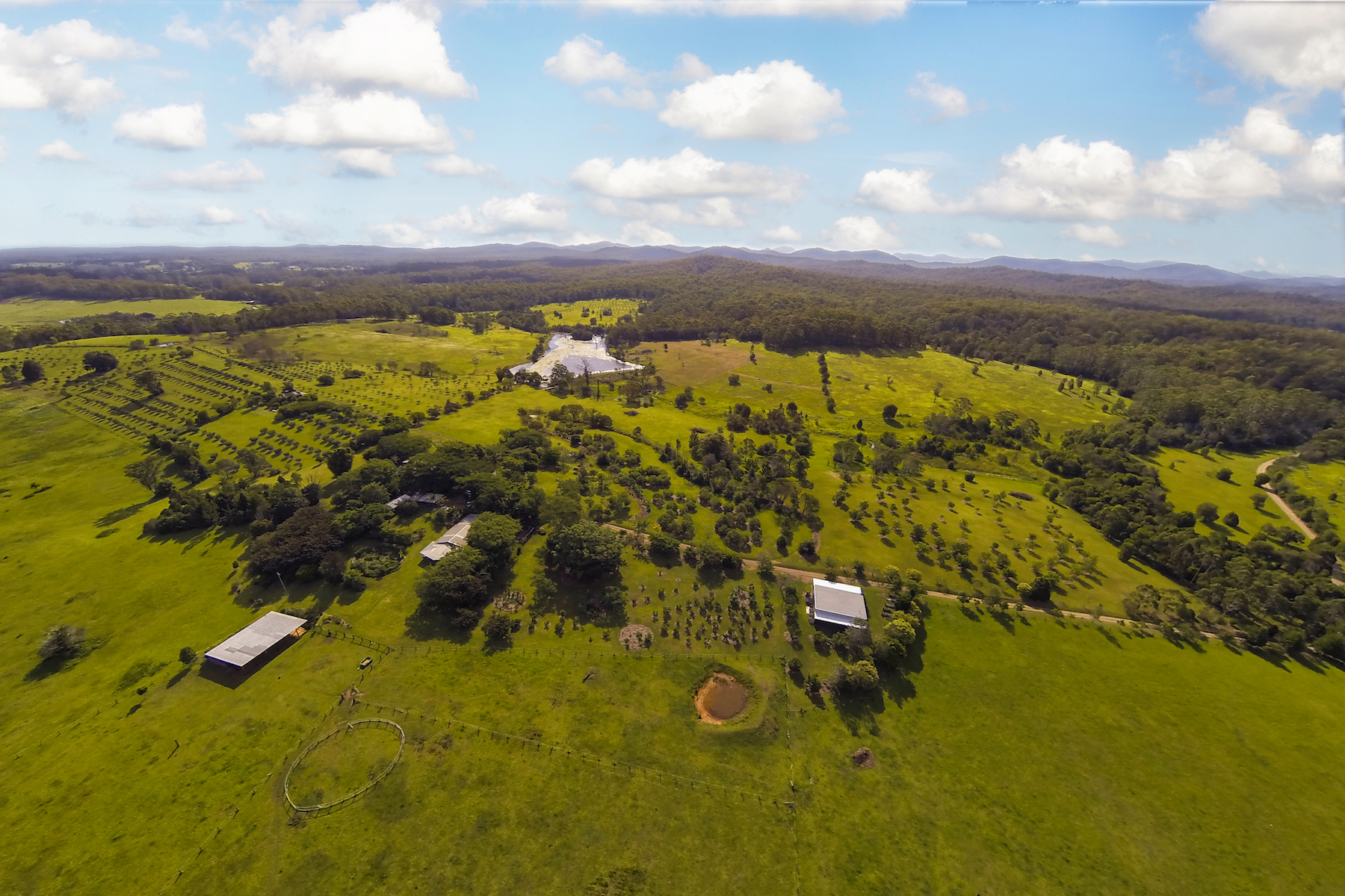 Farm / Ranch / Plantation for Sale at Happening Farm Tamban Road Sydney, New South Wales 2441 Australia