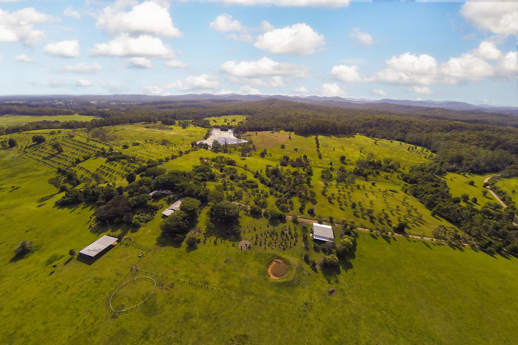 Ferme / Ranch / Plantation pour l Vente à Happening Farm Tamban Road Sydney, New South Wales 2441 Australie