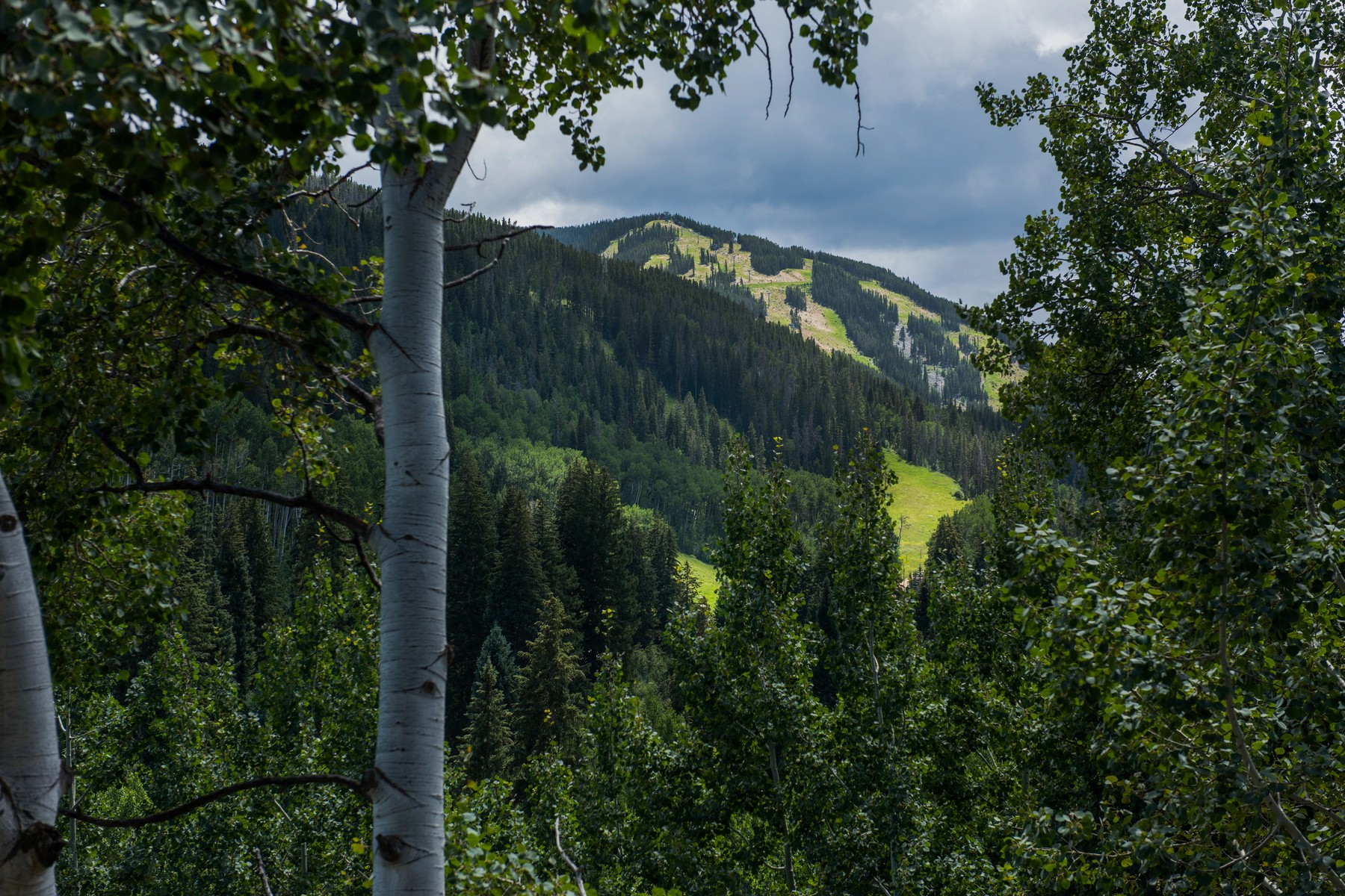 Single Family Home for Active at 60 Elk Track Court Beaver Creek, Colorado 81620 United States