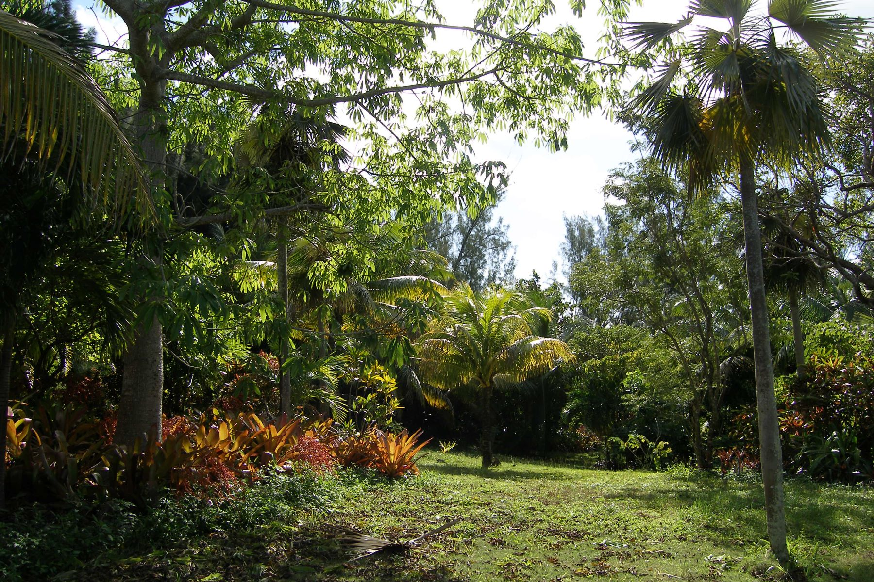 Additional photo for property listing at HEAVEN IS A LITTLE CLOSER IN A HOUSE BY THE SEA North Palmetto Point, Palmetto Point, Eleuthera Bahamas