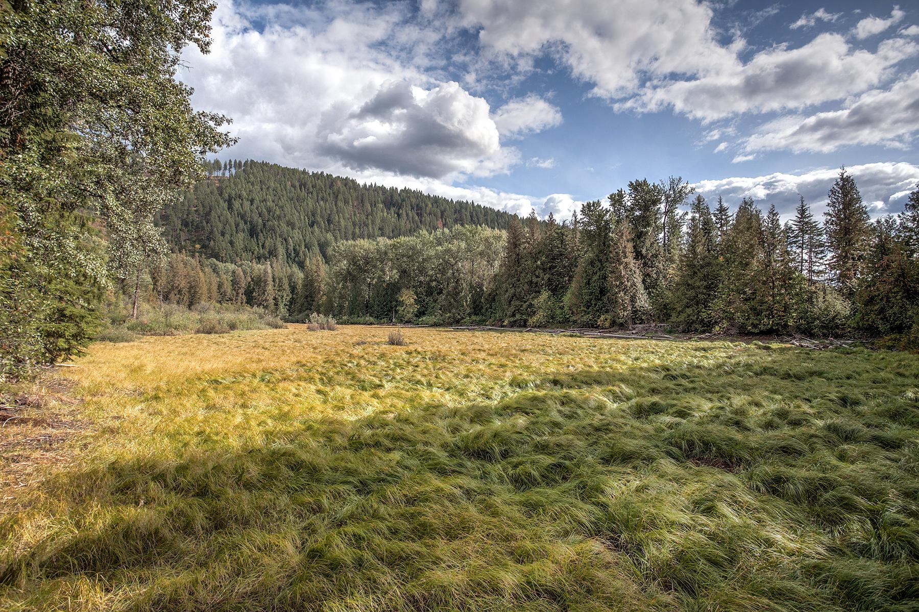 Terreno por un Venta en BUSHWOOD ESTATES Lot 5 1585 Lost Creek Rd Coolin, Idaho 83821 Estados Unidos