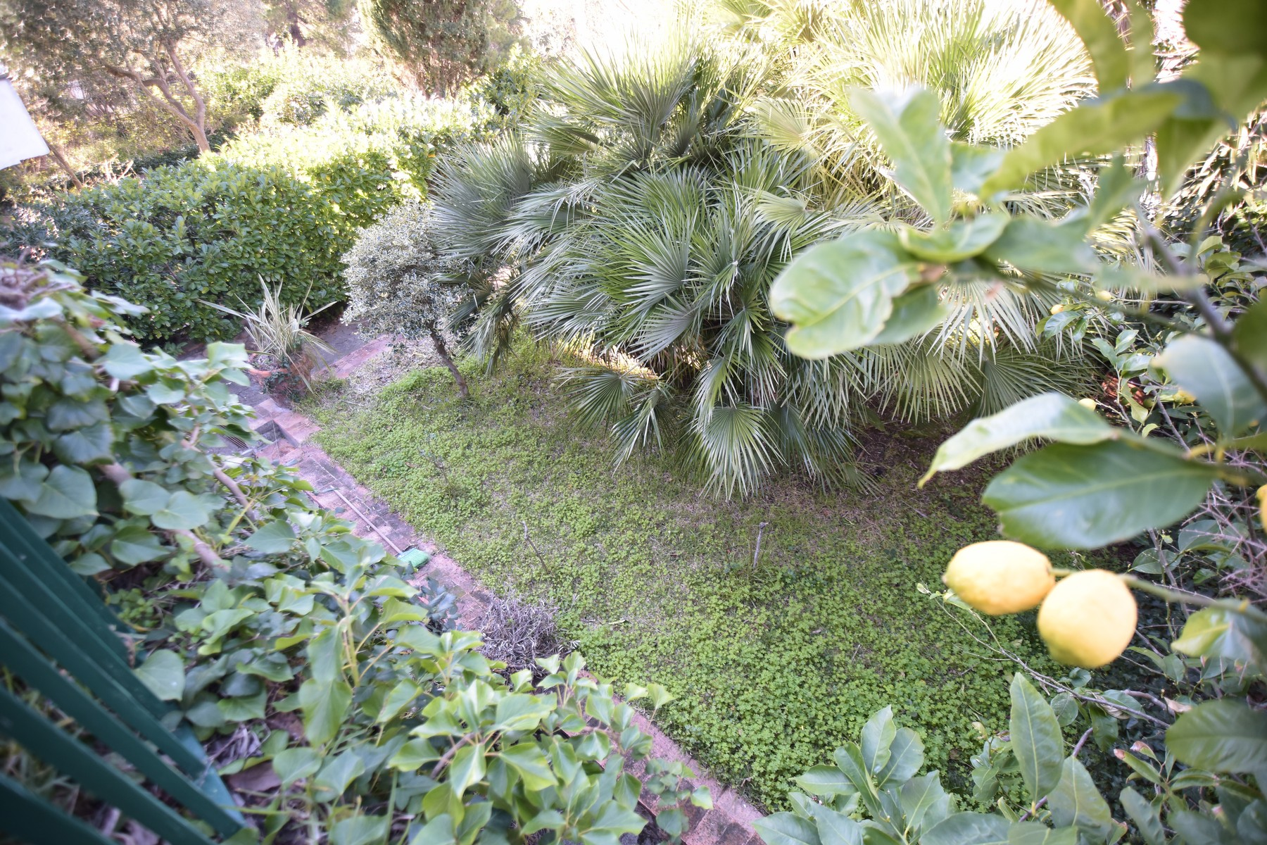 Additional photo for property listing at Beautiful house with garden Capri, Naples Italien