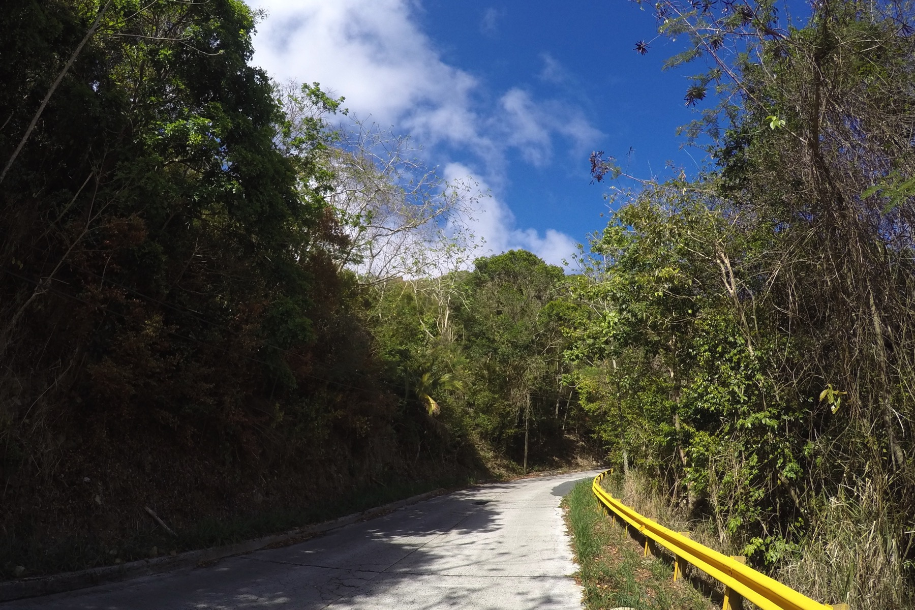 Land for Sale at Mount Sage Land Lot 3 Sage Mountain, Tortola British Virgin Islands