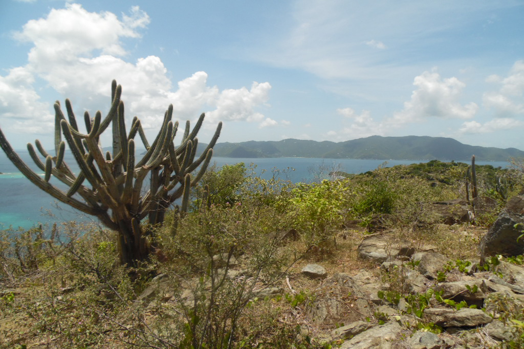 Additional photo for property listing at Jost Land Little Harbour, Jost Van Dyke Iles Vierges Britanniques
