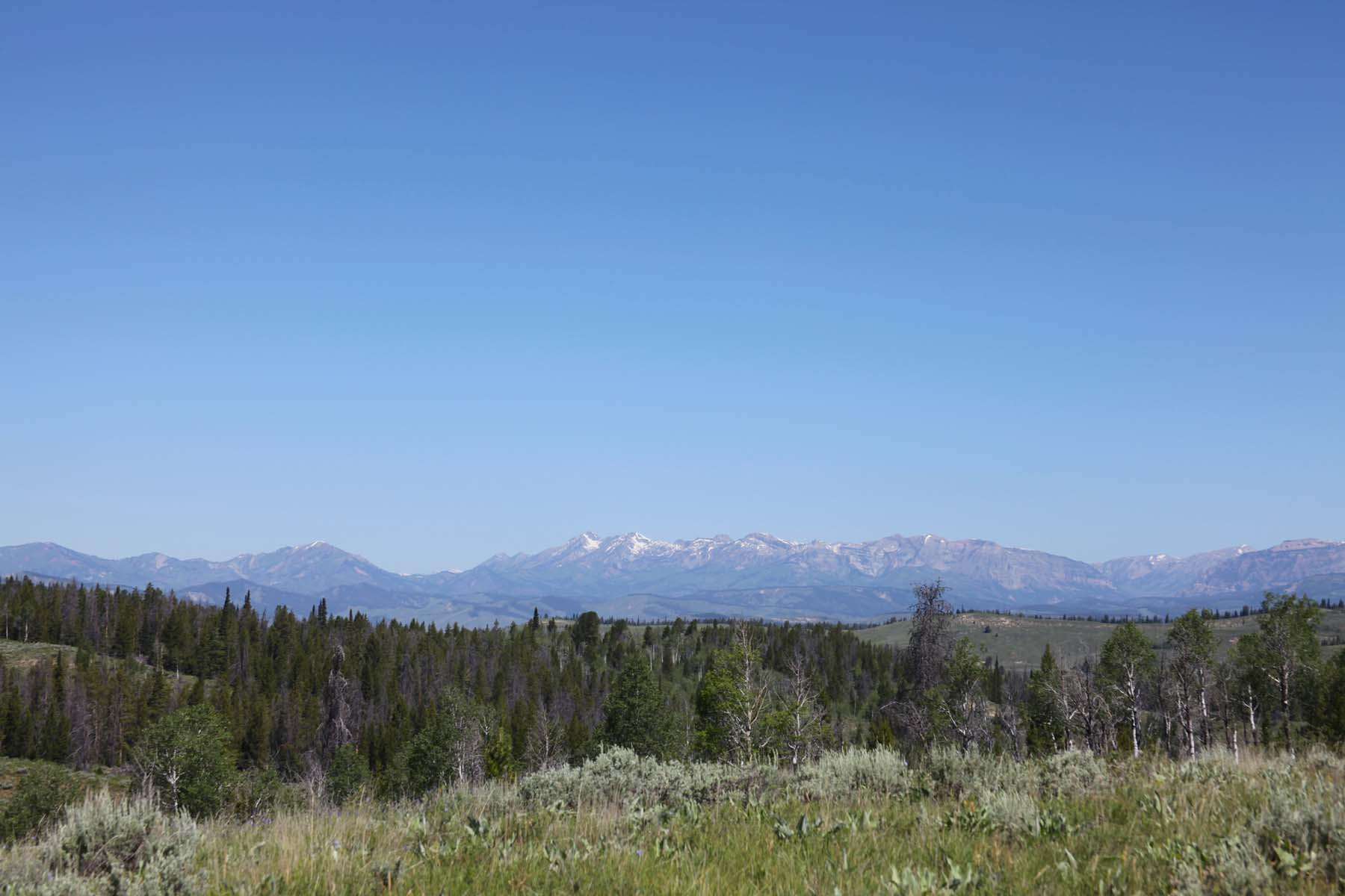 土地 为 销售 在 Prime Hoback Ranches Property Hoback Ranches Lots 7, 8-1 and 8-2 邦杜兰特, 怀俄明州, 82922 Jackson Hole, 美国