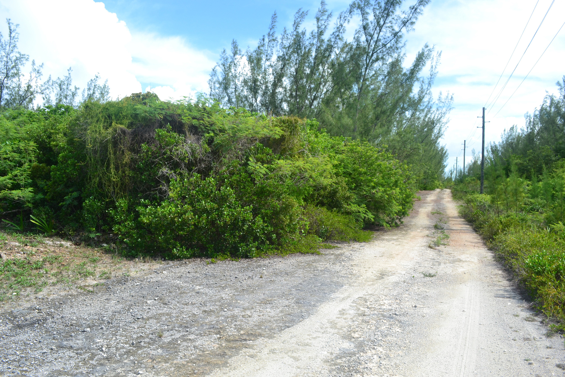 Additional photo for property listing at Lot Q - Whale Point Whale Point, Eleuthera Bahamas