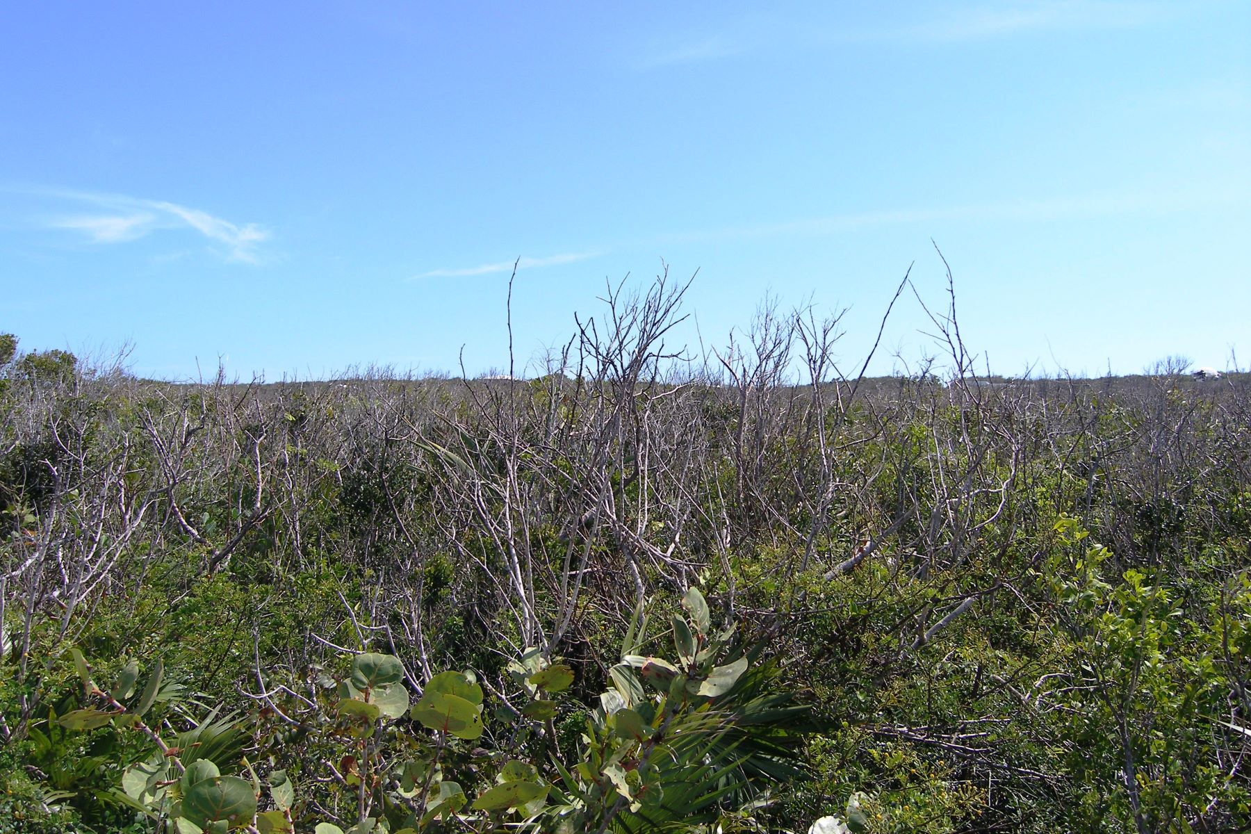 Additional photo for property listing at Hillside Lot Eleuthera Island Shores, Gregory Town, Eleuthera Bahamas