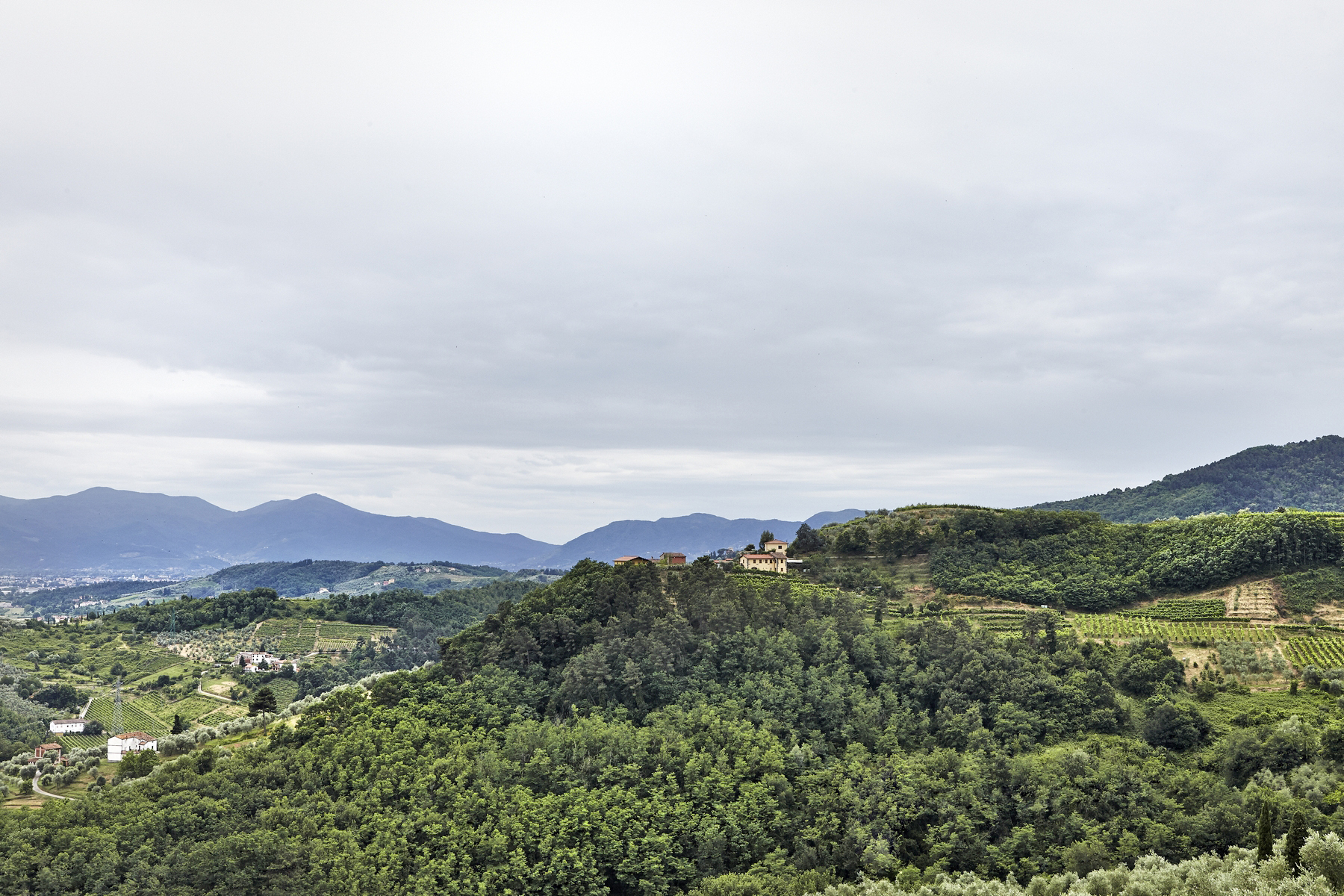 Additional photo for property listing at Traditional two story villa overlooking the valley Lucca, Lucca Italia