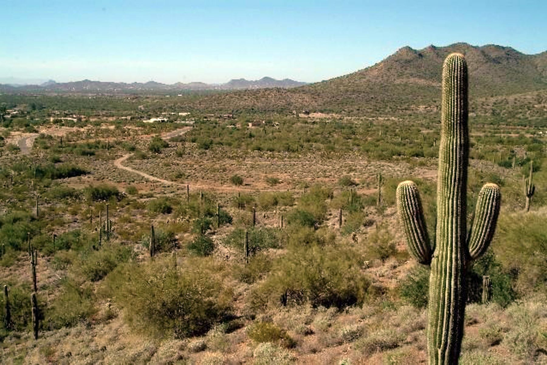 Terreno per Vendita alle ore Mountain Preserve Custom Estate Lot in Cave Creek, AZ 36480 E Rackensack Rd #5 Cave Creek, Arizona, 85331 Stati Uniti
