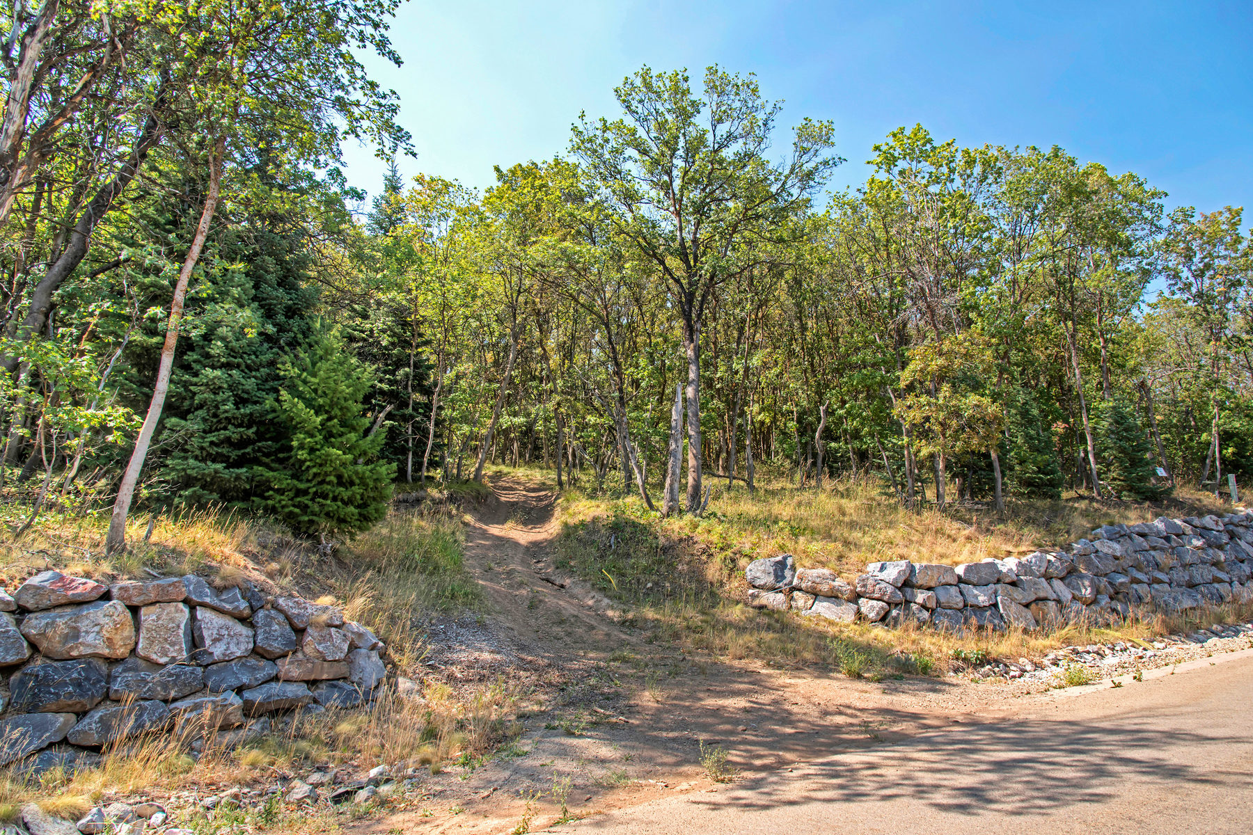 Additional photo for property listing at Your Own Enchanted Forest 1210 S Eagle Nest Lot 65 Woodland Hills, Utah 84653 États-Unis