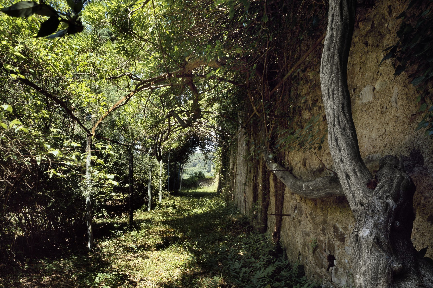 Additional photo for property listing at Giacomo Puccini's splendid villa Via di Caroggio Lucca, Lucca 55100 Italien