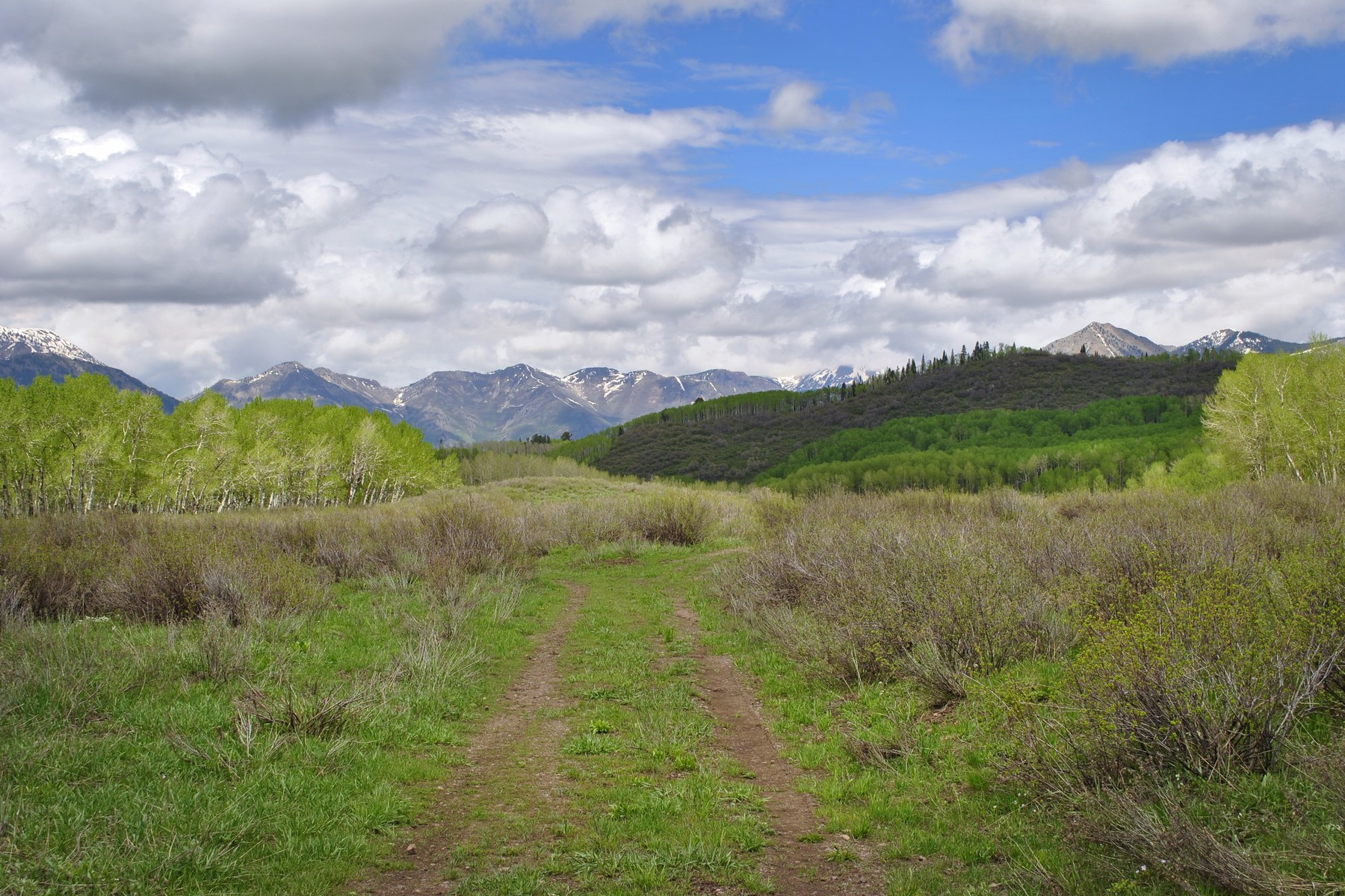 Land for Sale at Clear Fork Ranch 1633 Clear Fork Road Crawford, Colorado 81415 United States