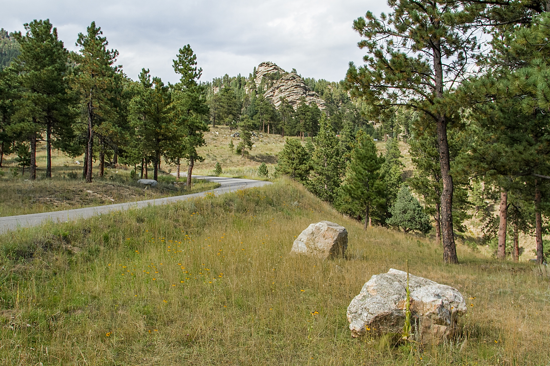 Property for Active at 123 Fox Ridge Drive 123 Fox Ridge Drive Evergreen, Colorado 80439 United States
