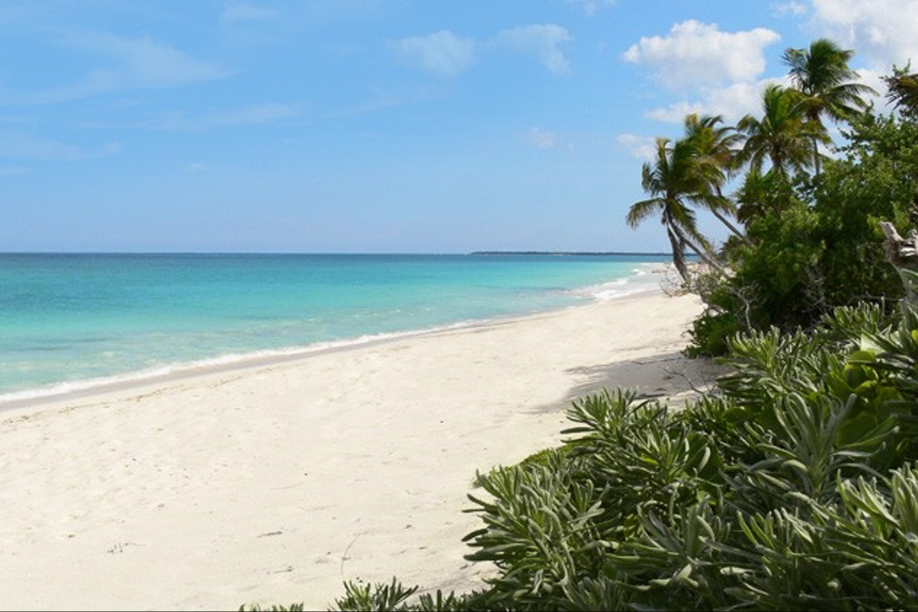 Additional photo for property listing at SIAN KA'AN BEACHFRONT LOTS  Tulum, Quintana Roo 77100 Mexico
