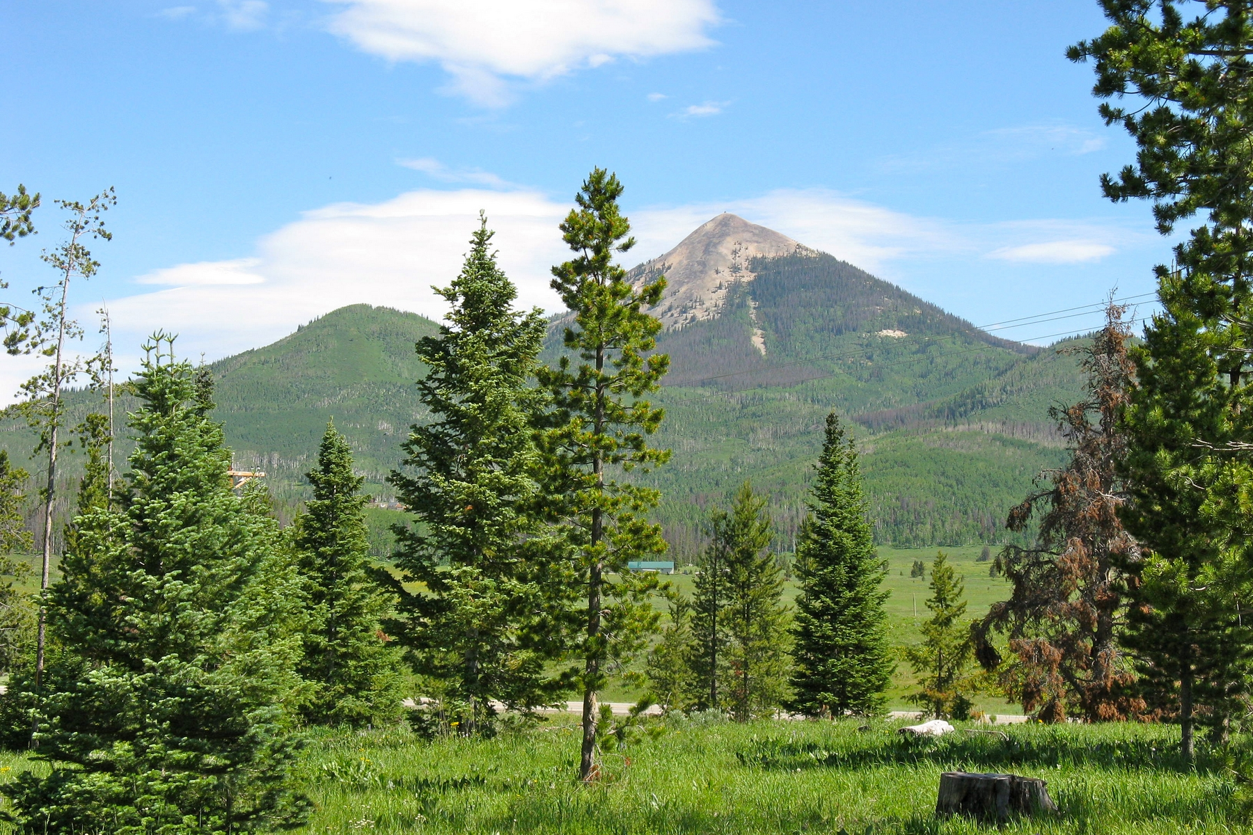 Land for Sale at Aspen Heights Lot 4 60330 Quail Drive Clark, Colorado 80428 United States