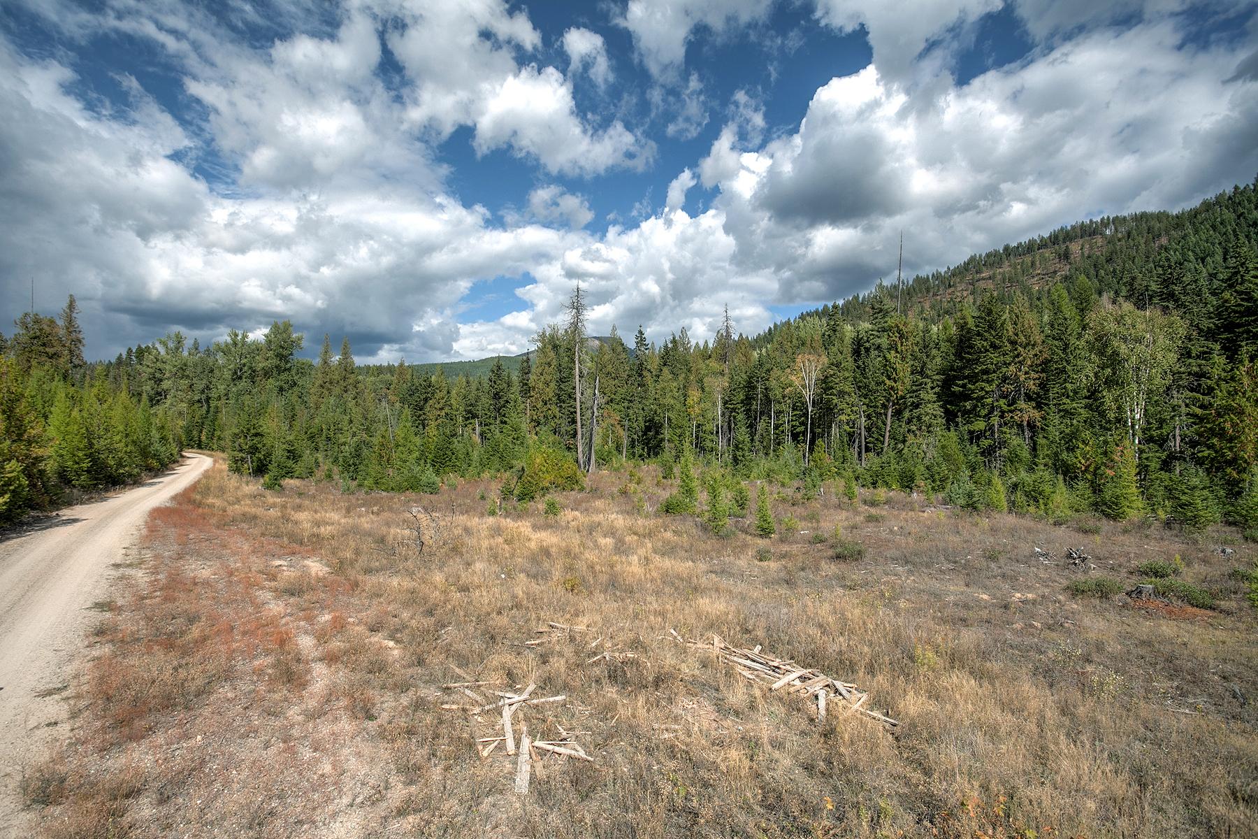 Land for Sale at BUSHWOOD ESTATES Lot 7 1406 Lost Creek Rd Coolin, Idaho 83821 United States