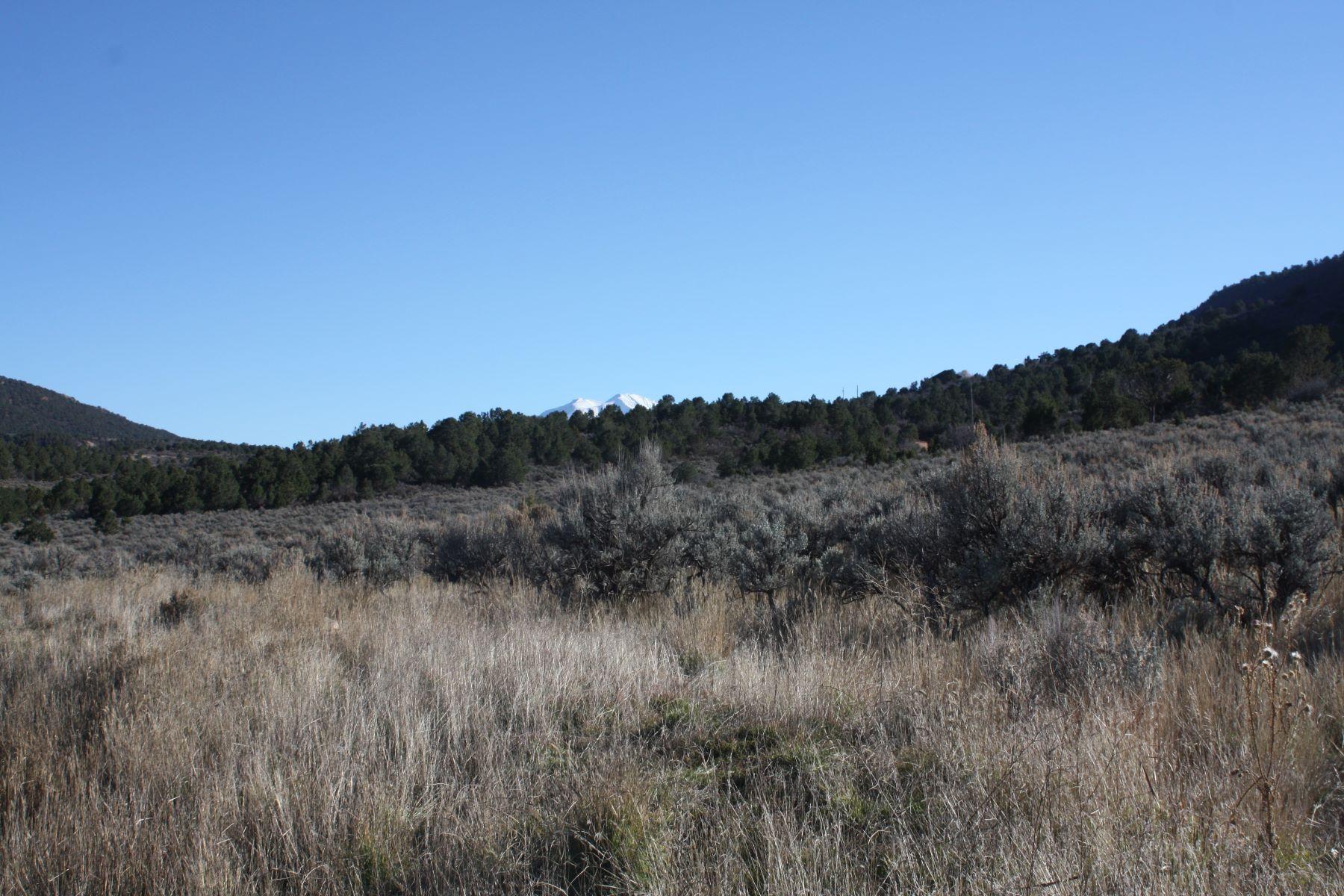 Terrain pour l Vente à Lot 40 Springridge Reserve Lot 40 Hidden Valley Glenwood Springs, Colorado, 81601 États-Unis