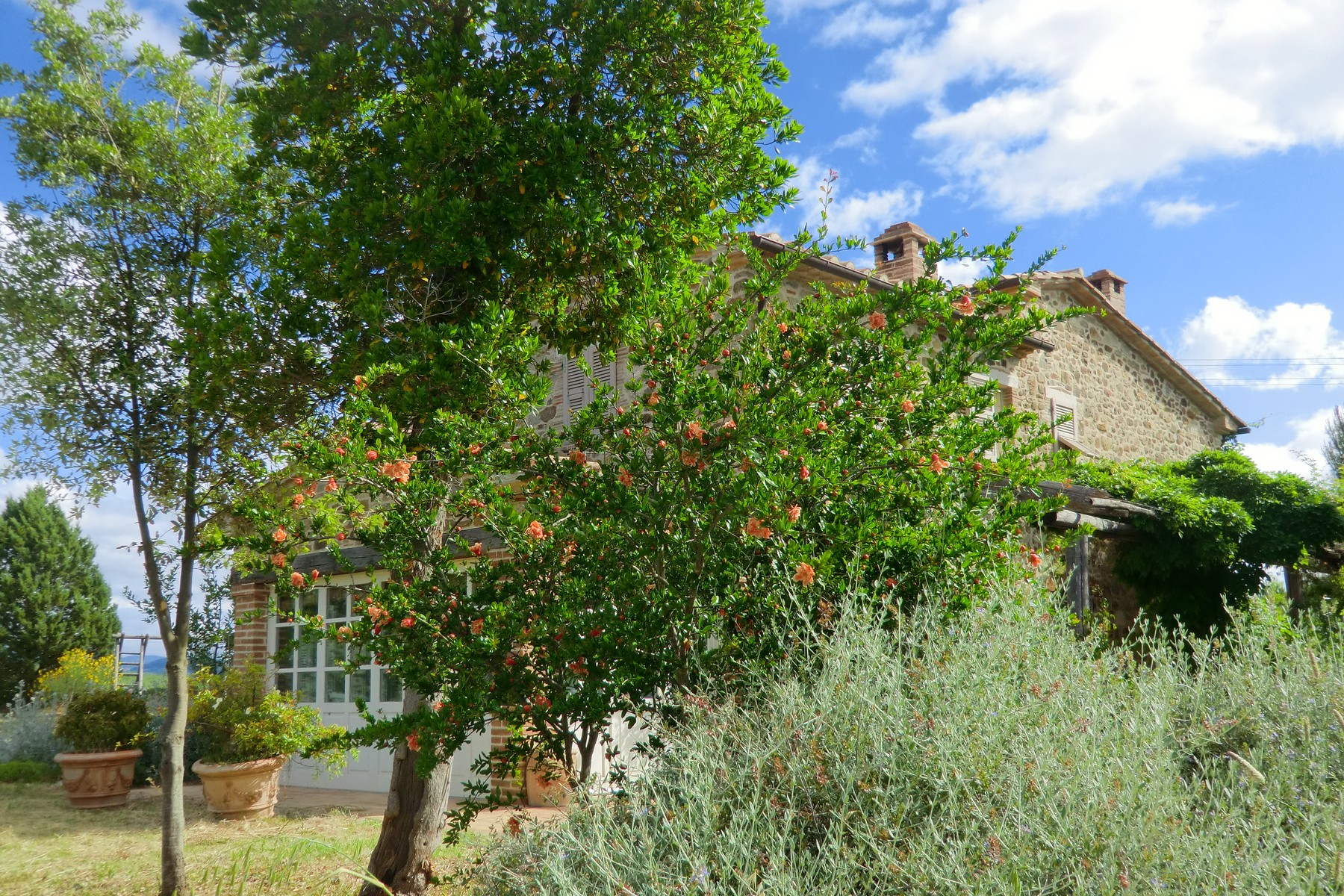 Additional photo for property listing at Typical Tuscan farmhouse in the hearth of the Maremma  Saturnia, Grosseto 58014 Italy