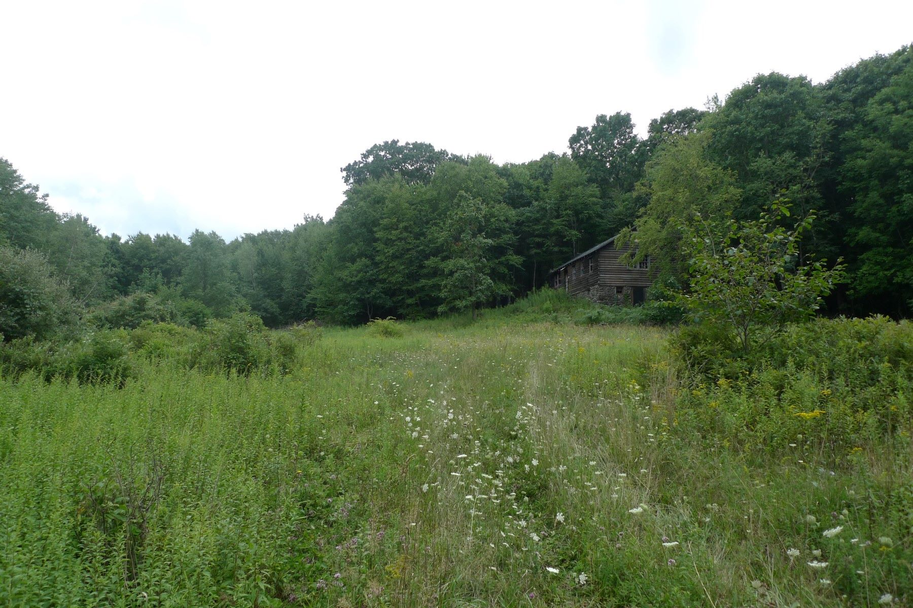 Additional photo for property listing at Wooded & Private Mountainside 2886 Pleasant Ridge Road Dover Plains, New York 12594 United States