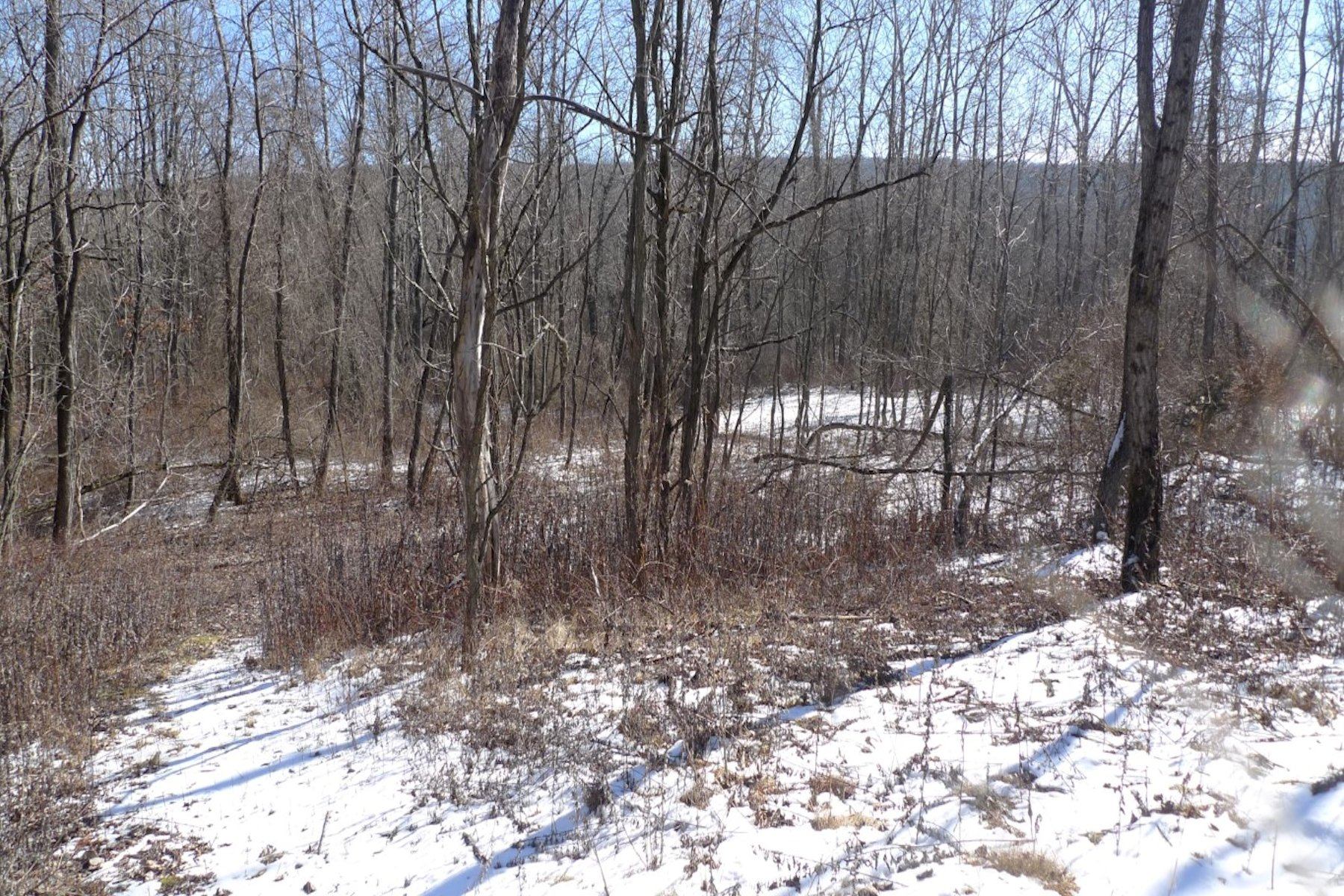 Additional photo for property listing at Woodlands & Clearings Route 292 Pawling, New York 12564 United States