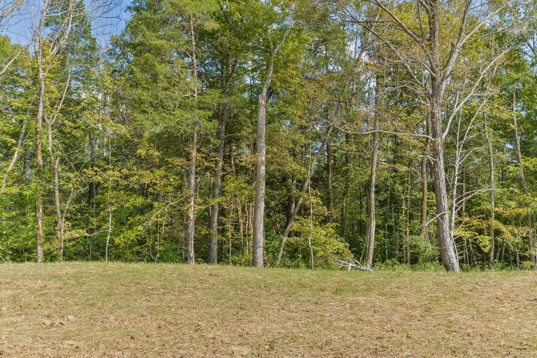 Additional photo for property listing at 37 Shakes Creek Drive 37 Shakes Creek Drive Fisherville, Kentucky 40023 United States