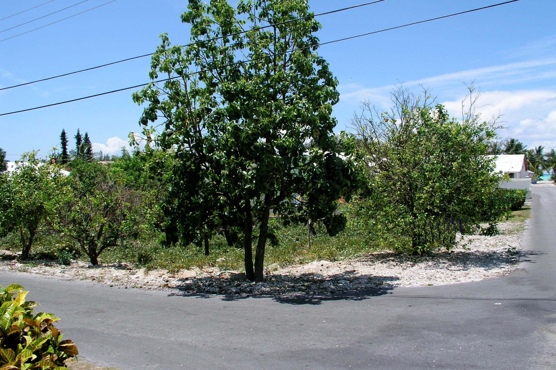 Terreno por un Venta en 14th Street Lot Spanish Wells, Eleuthera Bahamas