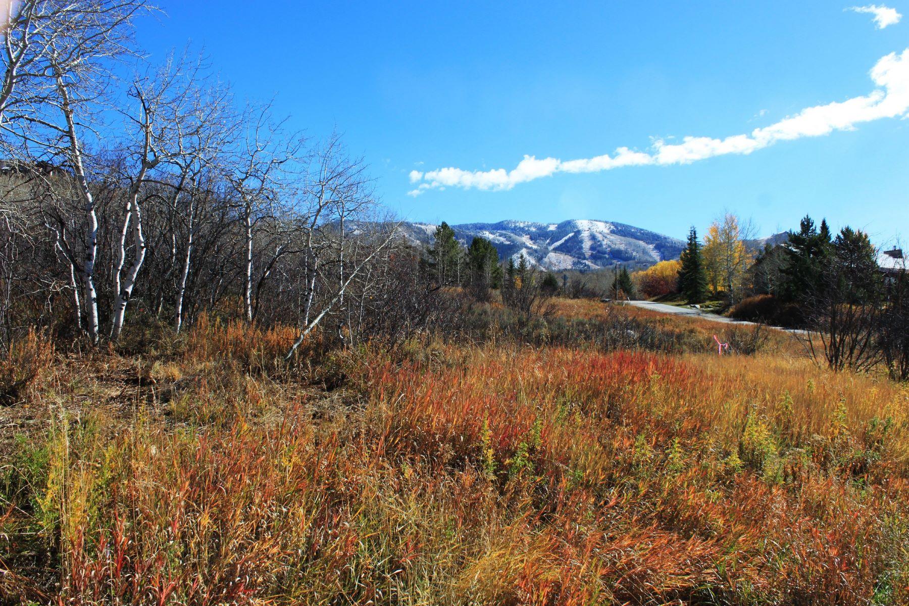 Terrain pour l Vente à Fox Grove Subdivision Fish Creek Falls Rd Steamboat Springs, Colorado, 80487 États-Unis