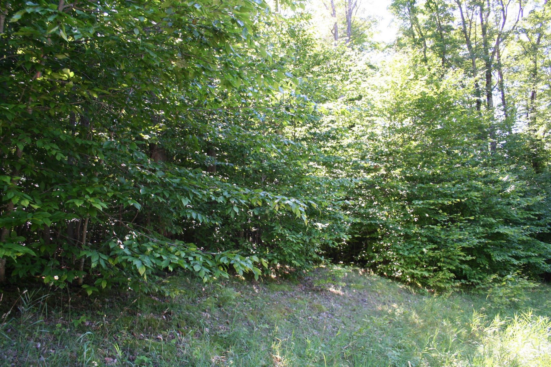 Land for Sale at Oaks of Walloon TBD Ash Court, Petoskey, Michigan, 49770 United States