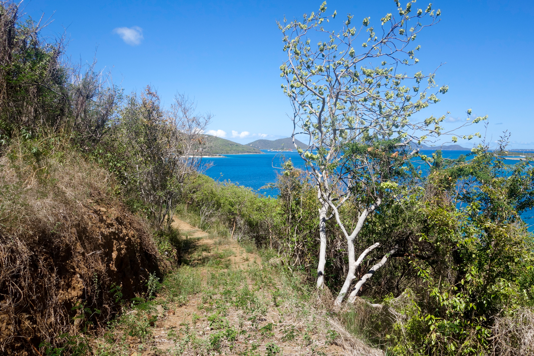 Additional photo for property listing at Little Mountain Beachside Land Little Mountain, Beef Island Βρετανικεσ Παρθενοι Νησοι