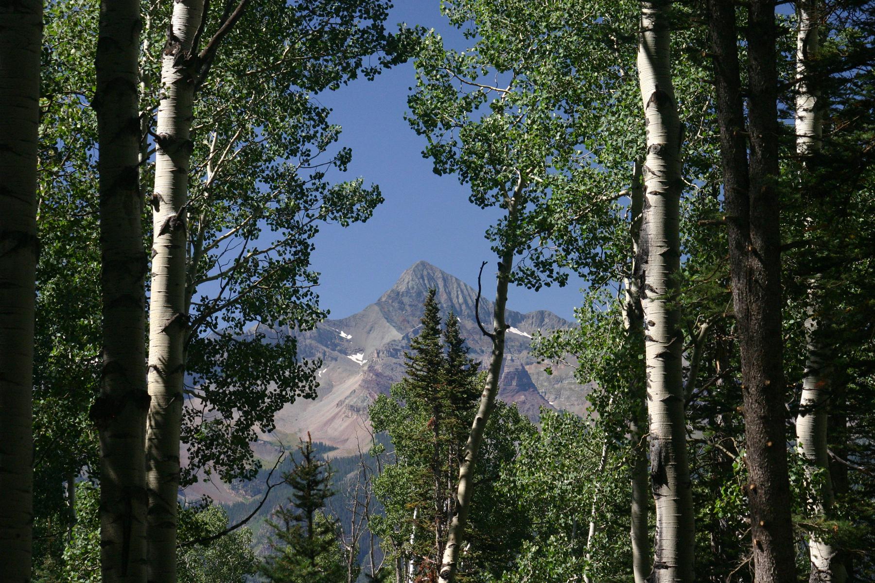 土地 のために 売買 アット Exceptional Ski Ranches Lot TBD Saddle Horn Lane, Lot 19 Telluride, コロラド, 81435 アメリカ合衆国