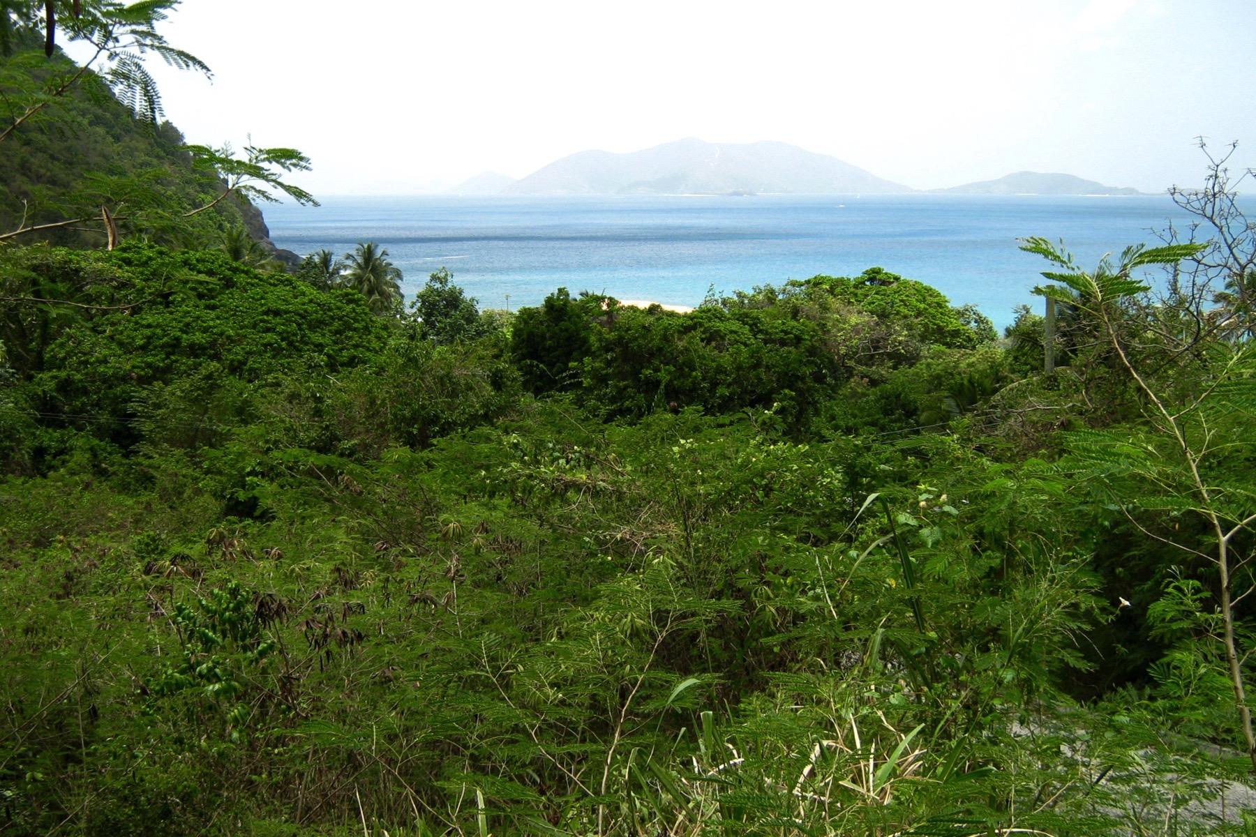 土地 为 销售 在 Ballast Bay Land Ballast Bay, 托尔托拉 英属维尔京群岛