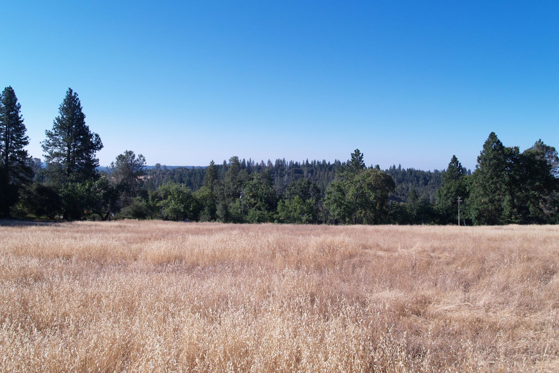 Land for Sale at 5 ACRES Hale Road 19625 Hale Road Volcano, California 95689 United States
