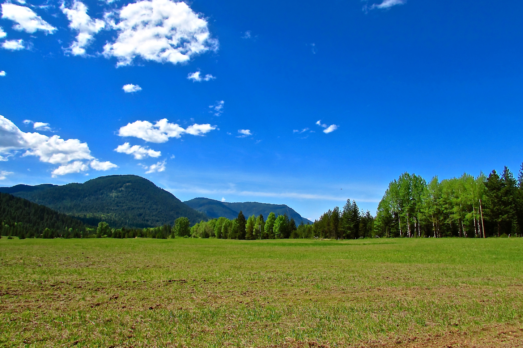 Additional photo for property listing at Magnificent Mountain Views - Large Acreage NNA Painter Road Clark Fork, Idaho 83811 United States