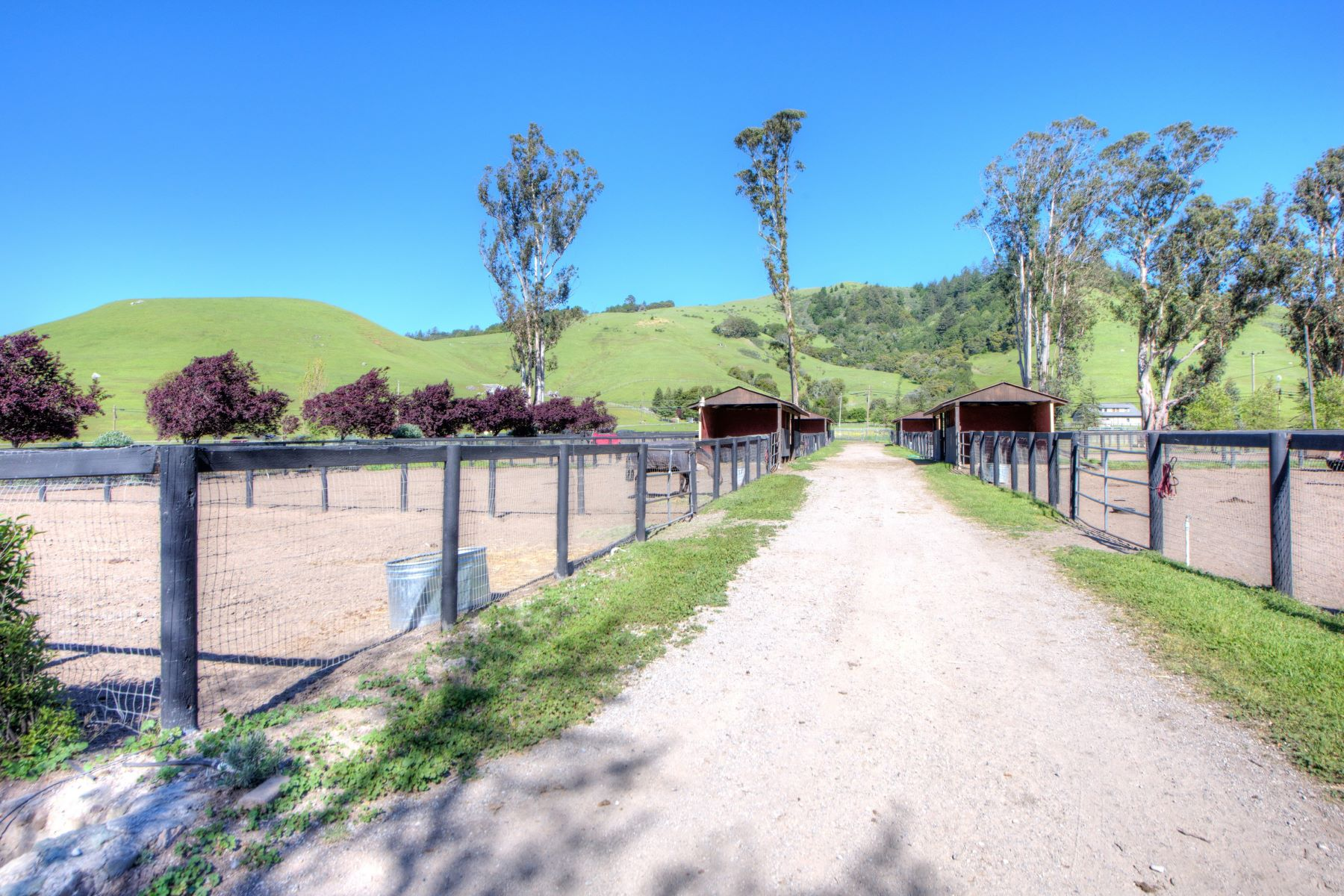 Additional photo for property listing at Equestrian Estate 3431 Nicasio Valley Rd Nicasio, California 94946 United States