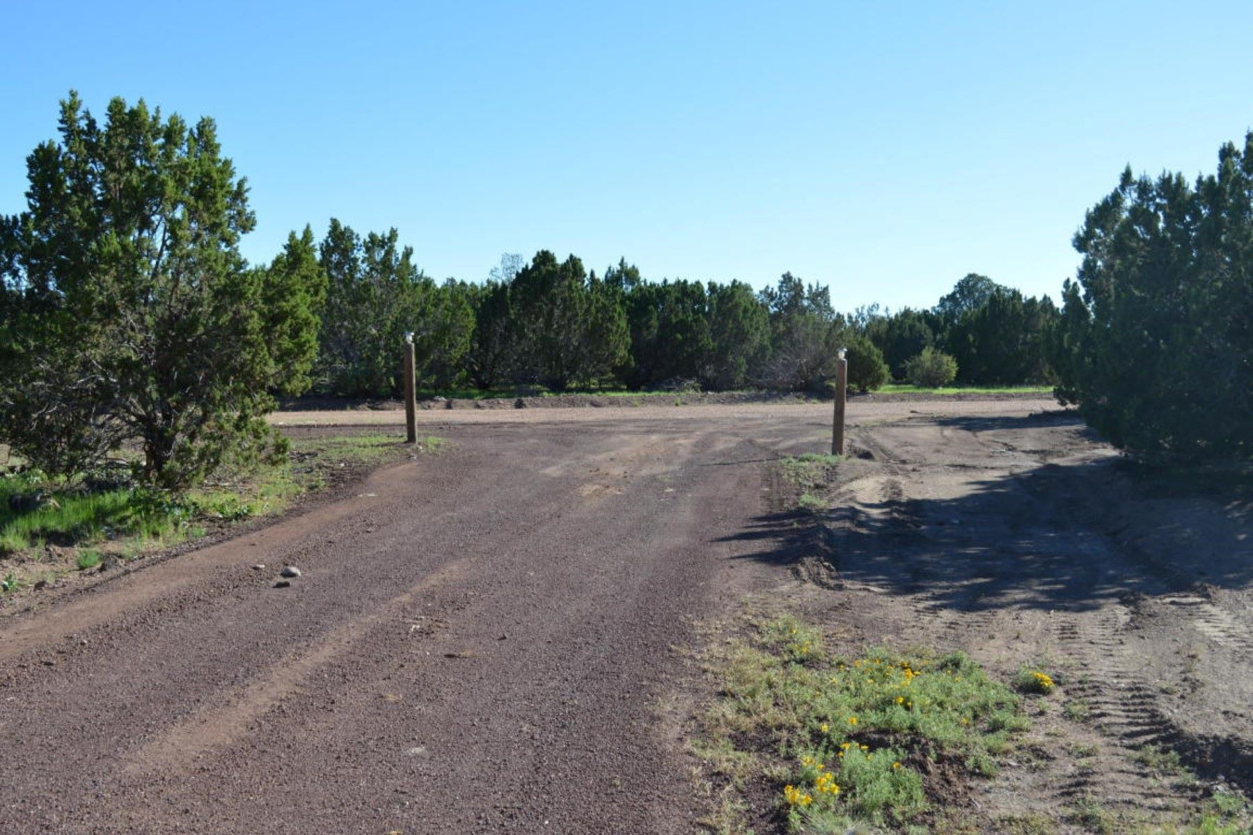 Land for Sale at Beautiful Williams lot 1259 E Cedar Wash Rd Williams, Arizona 86046 United States