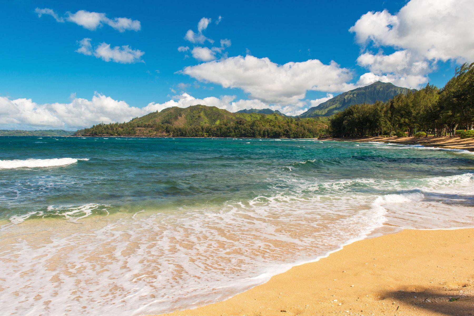 Tek Ailelik Ev için Satış at Hale Ono Hanalei 5709-A Kuhio Ave Hanalei, Hawaii, 96714 Amerika Birleşik Devletleri