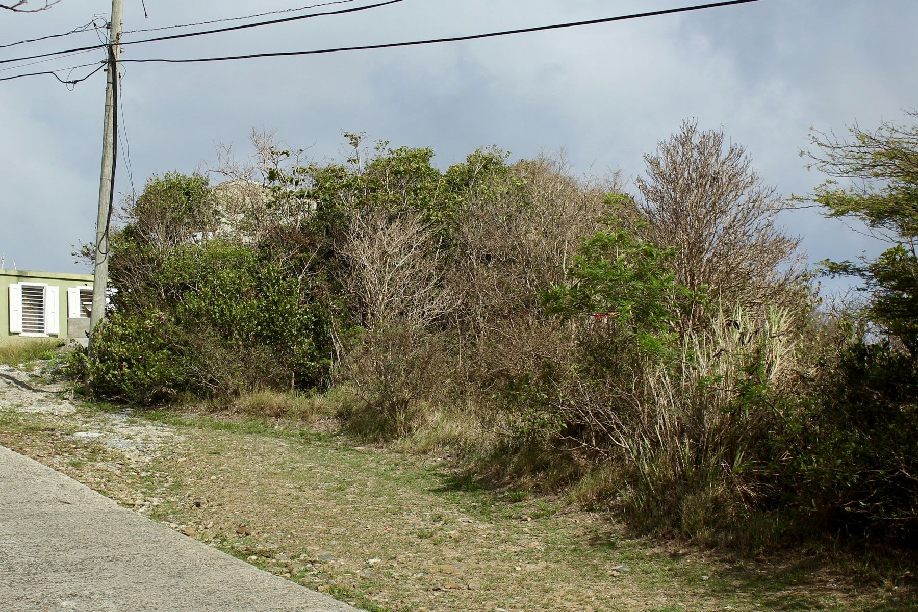Additional photo for property listing at Mount Sage Land Lot 5 Sage Mountain, Tortola Brittiska Jungfruöarna