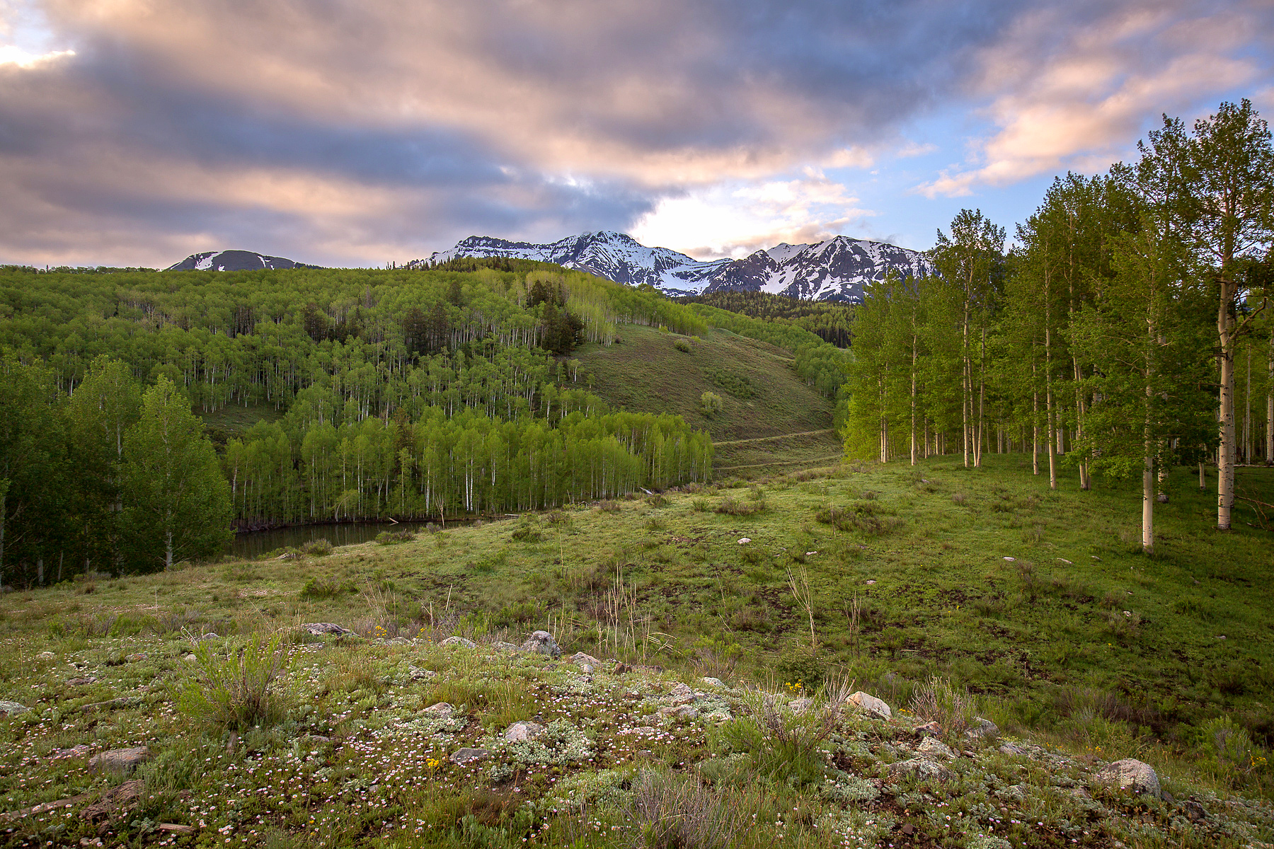 Land for Active at The Cushman Homestead 7676 Highway 145 Telluride, 81435 United States