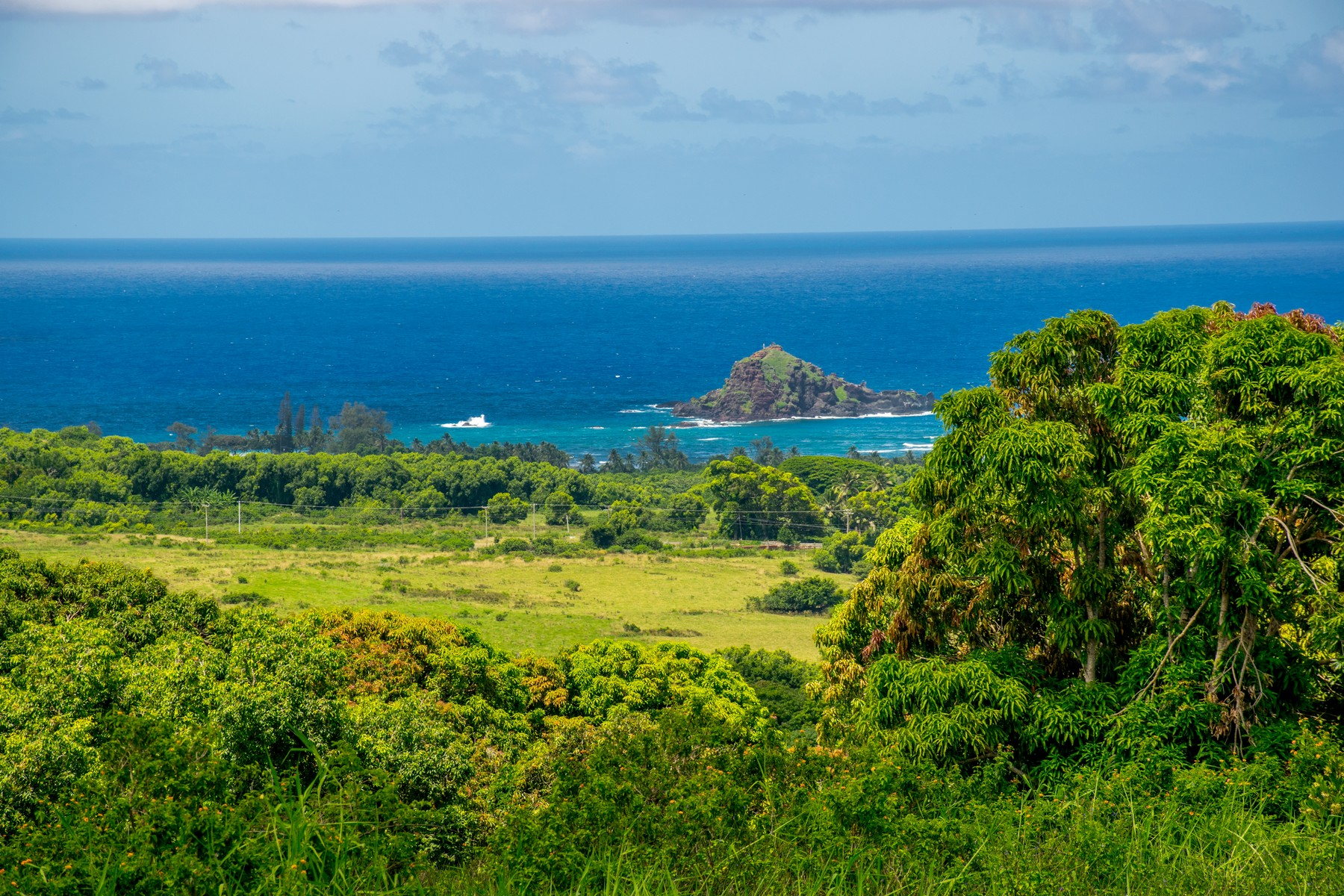 Land for Sale at Over 17 Acres in Majectic Hana 467 Kapia Road, Lot #1-Parcel #26 Hana, Hawaii, 96713 United States