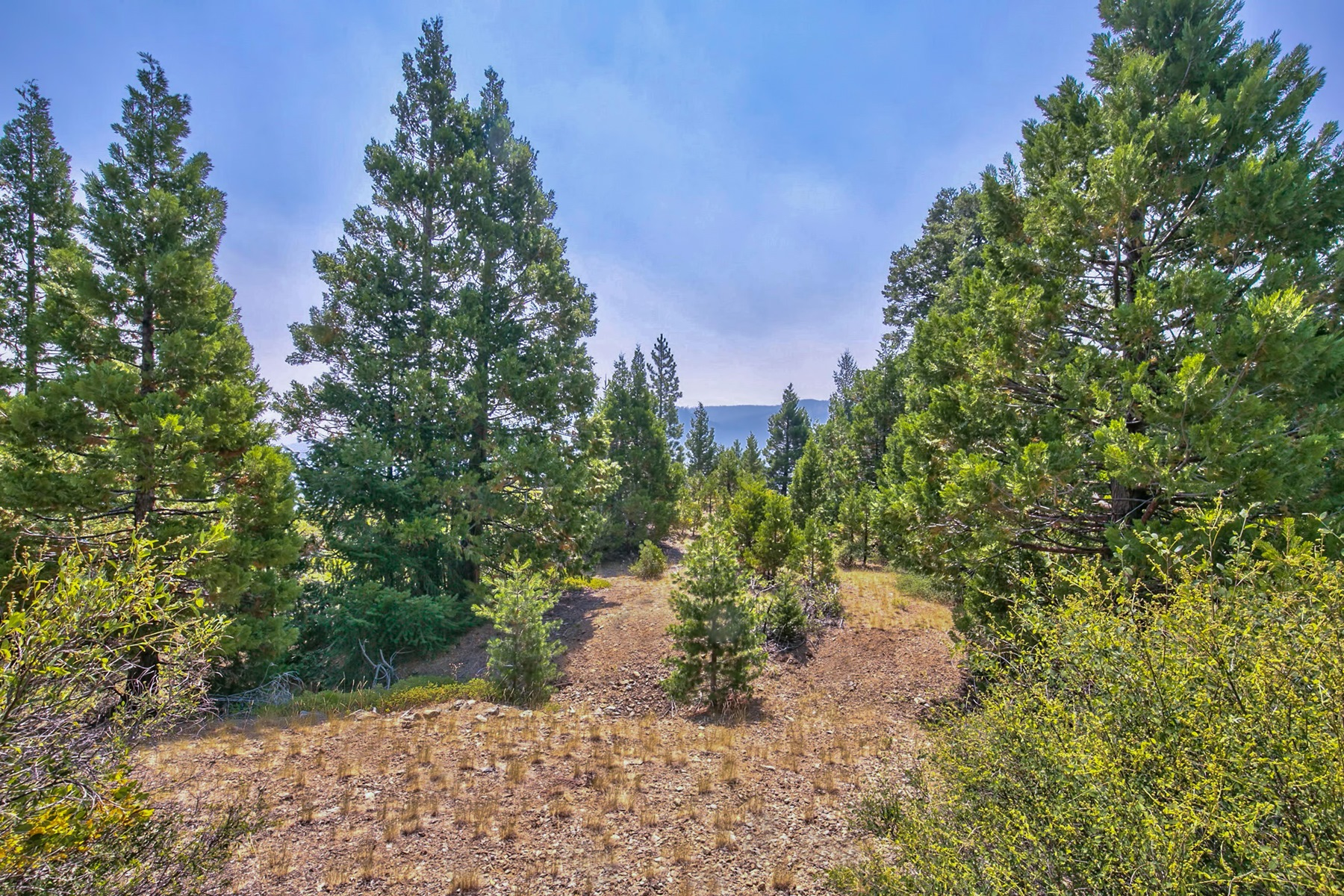 Additional photo for property listing at 008-120-029, 008-120-038 Sierra Buttes Road Sierra City, California 96125 United States