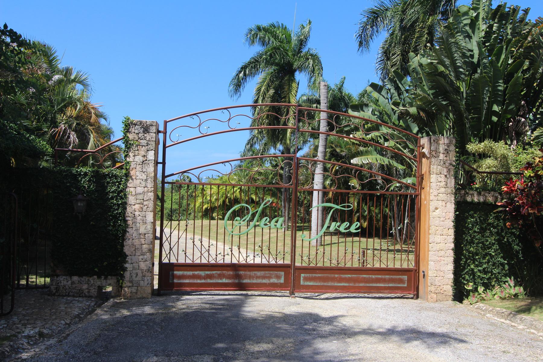 Property For Sale Cabrera