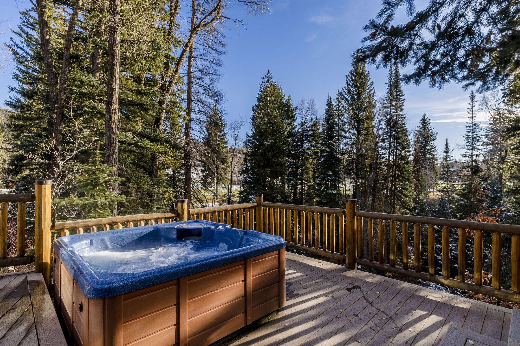 Maison unifamiliale pour l Vente à Mountain View Estates 669 Meadowbrook Circle Steamboat Springs, Colorado, 80487 États-Unis
