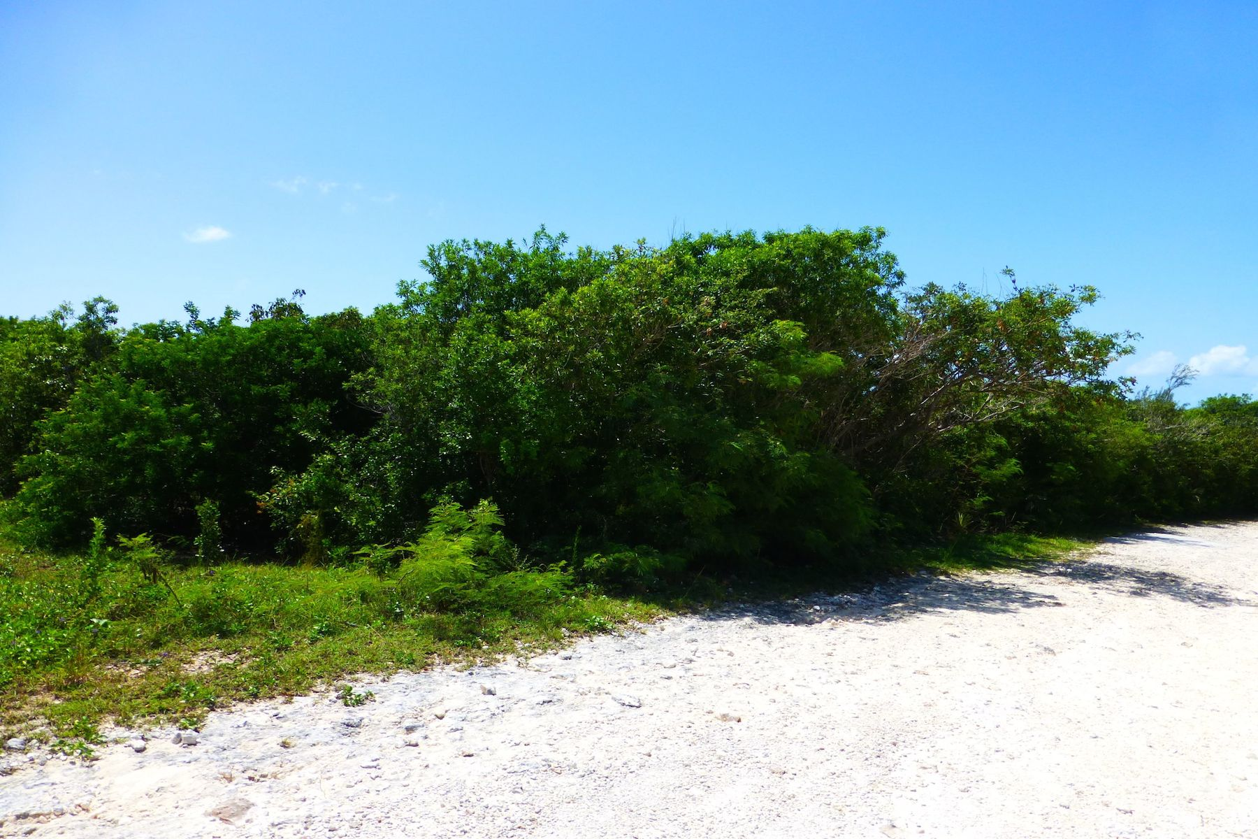 Land for Sale at Lot 22, Block 38, Section C Rainbow Bay, Eleuthera Bahamas