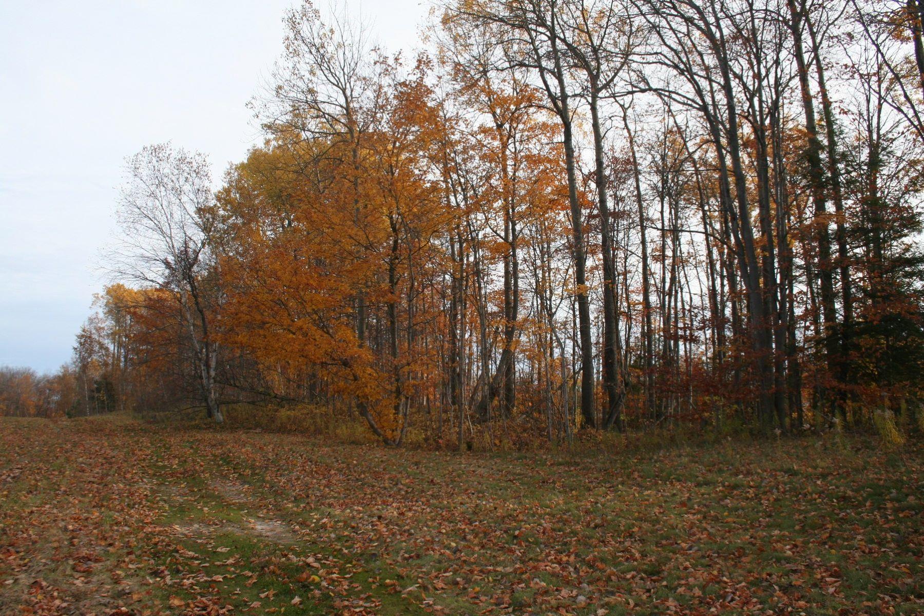 Additional photo for property listing at Coastal Woods 10 5374 Coastal Woods Court Bay Harbor, Michigan 49770 United States